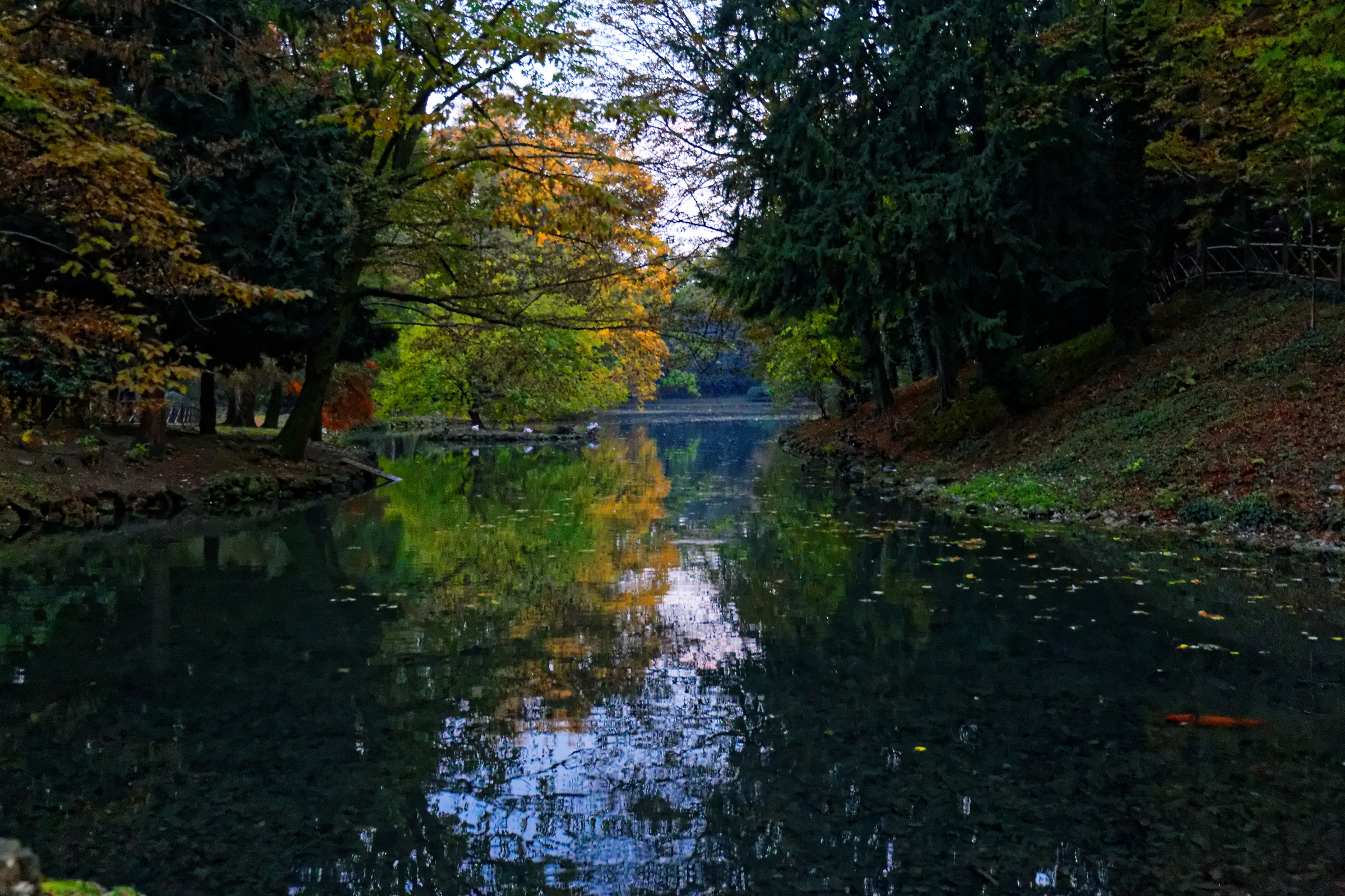 Autumn at the park of Monza 2...