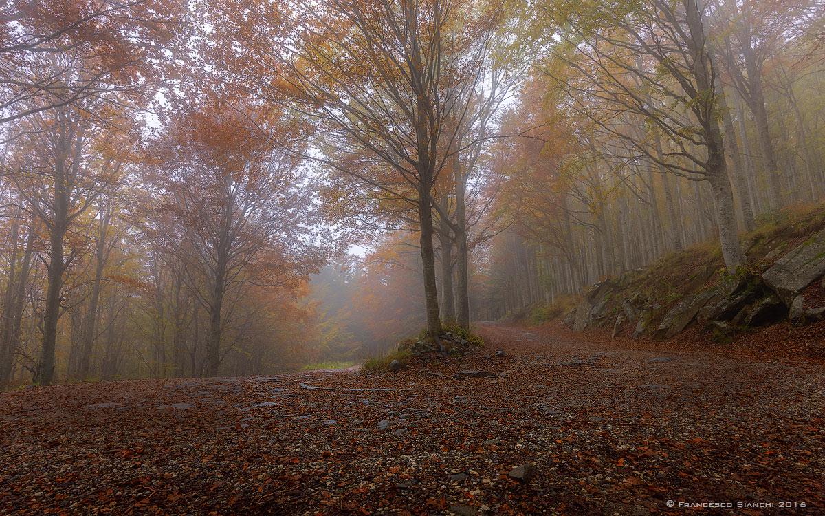 Road to Foce al Giovo...