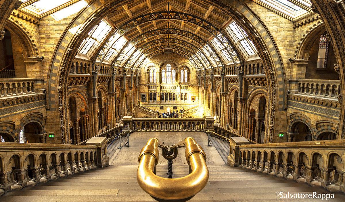 Natonal History Museum, London (UK)...