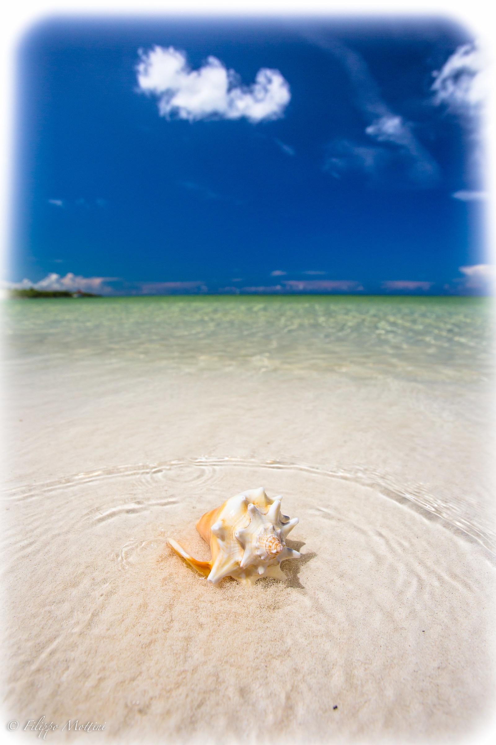 il mare di Cuba...