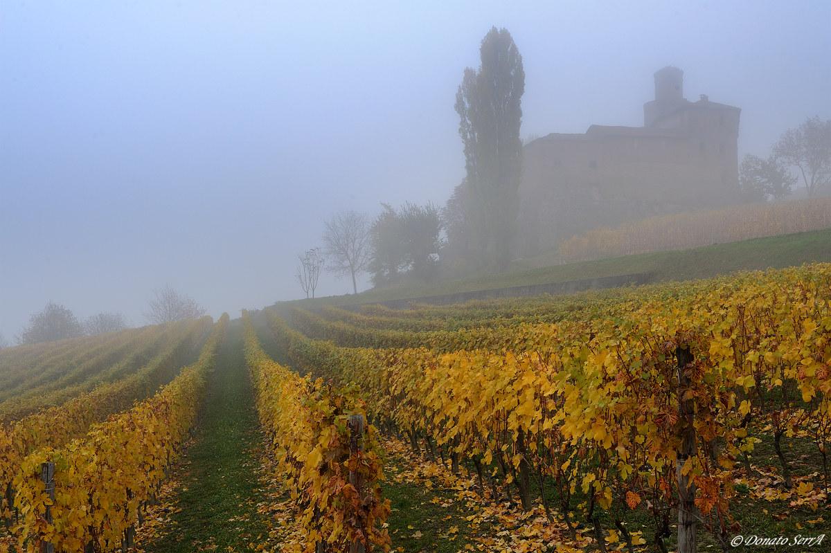 Castello Della Volta in the fog...