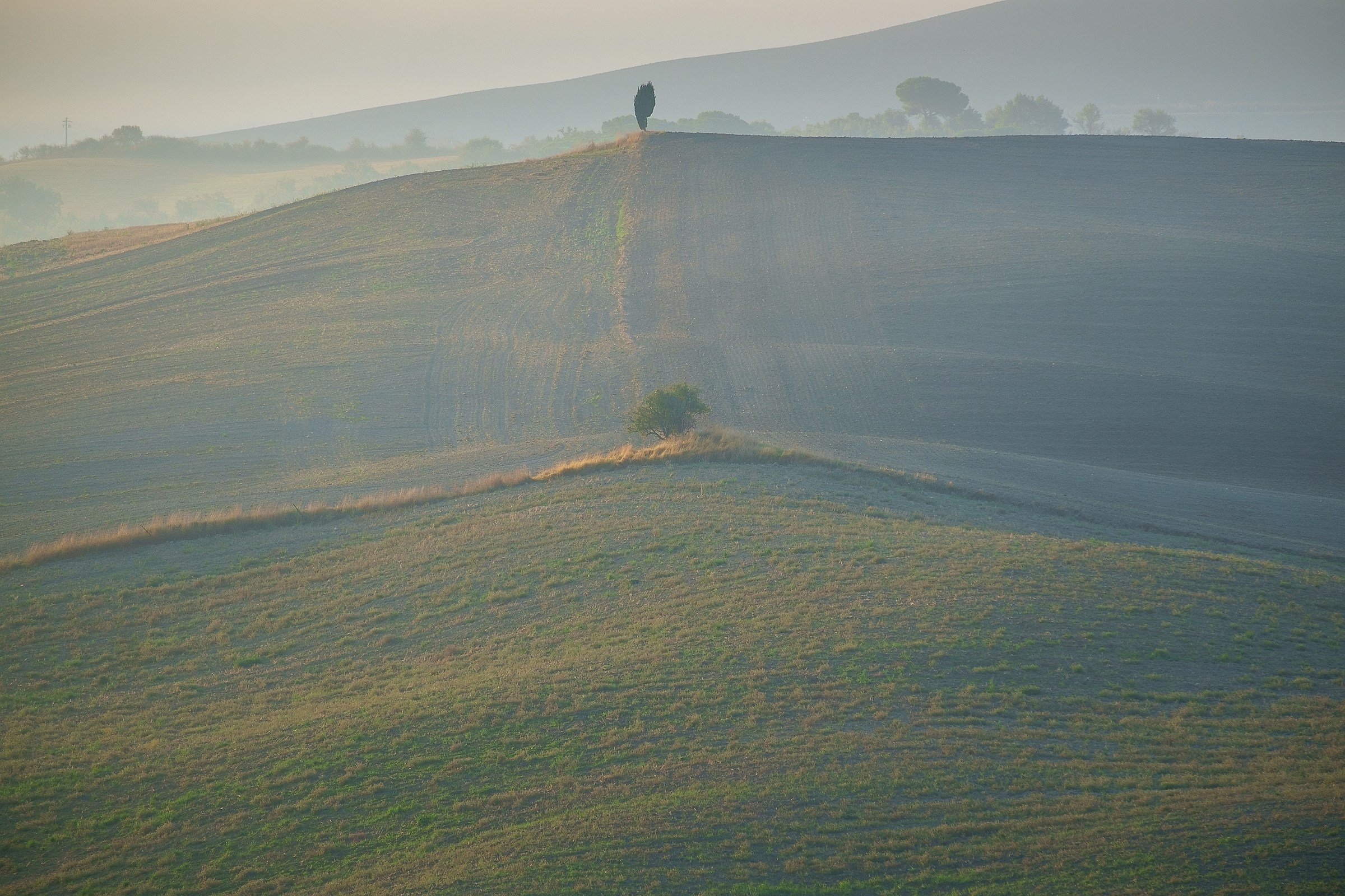 Val D'Orcia #3...