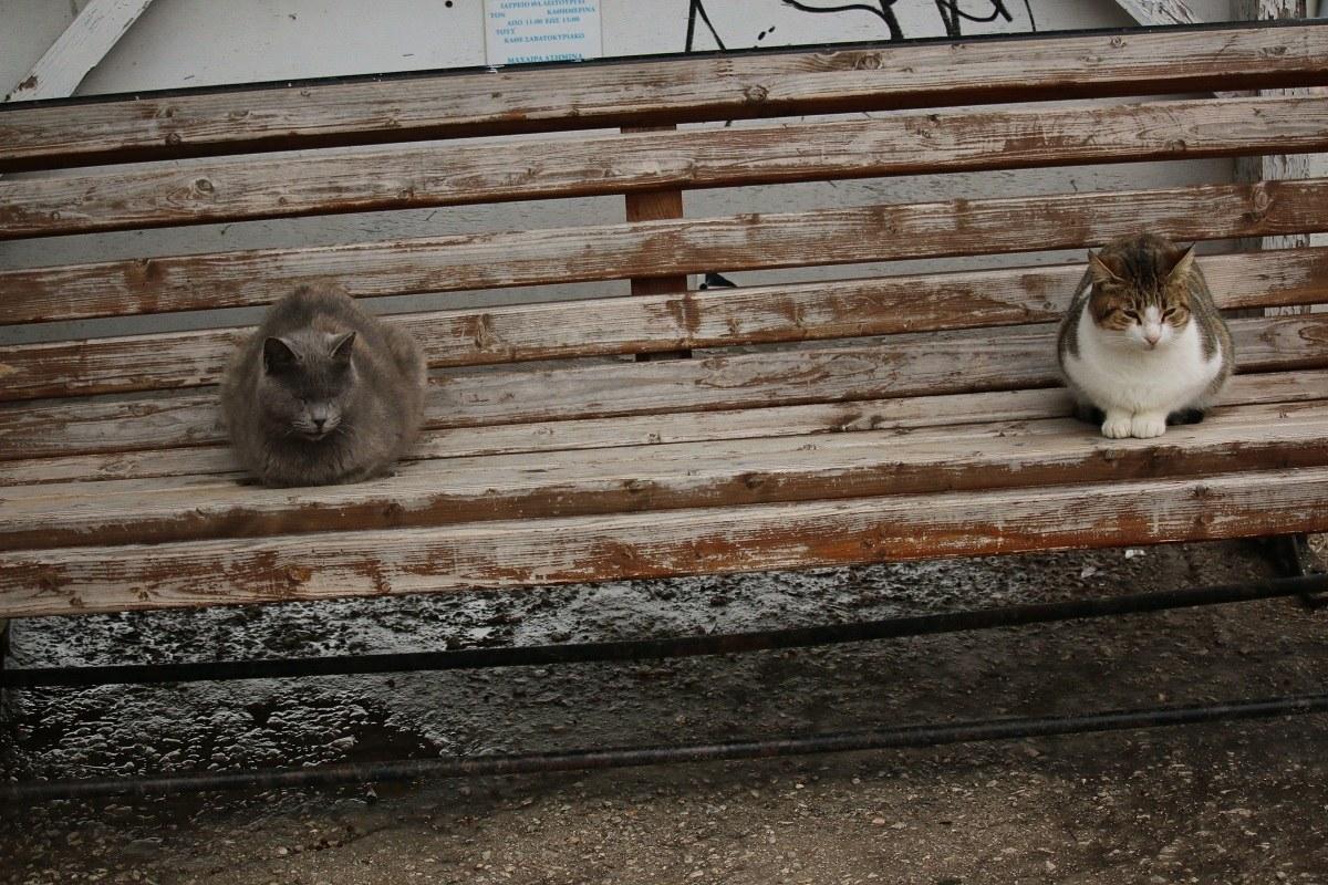waiting for Godot...
