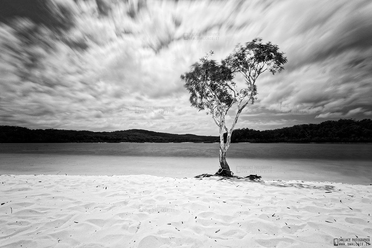 Fraser Island - lake mckenzie - Australia...