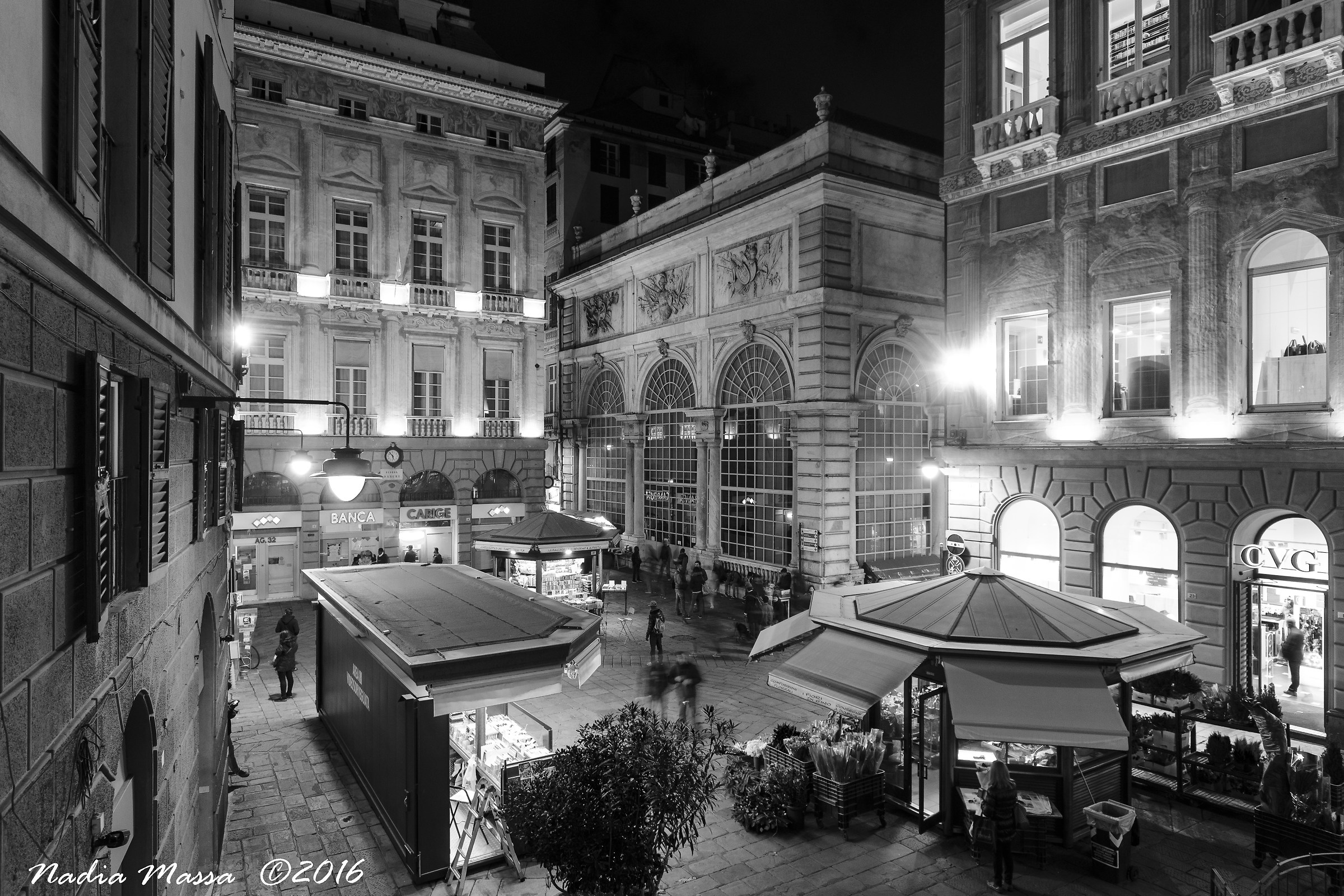 Piazza night benches...