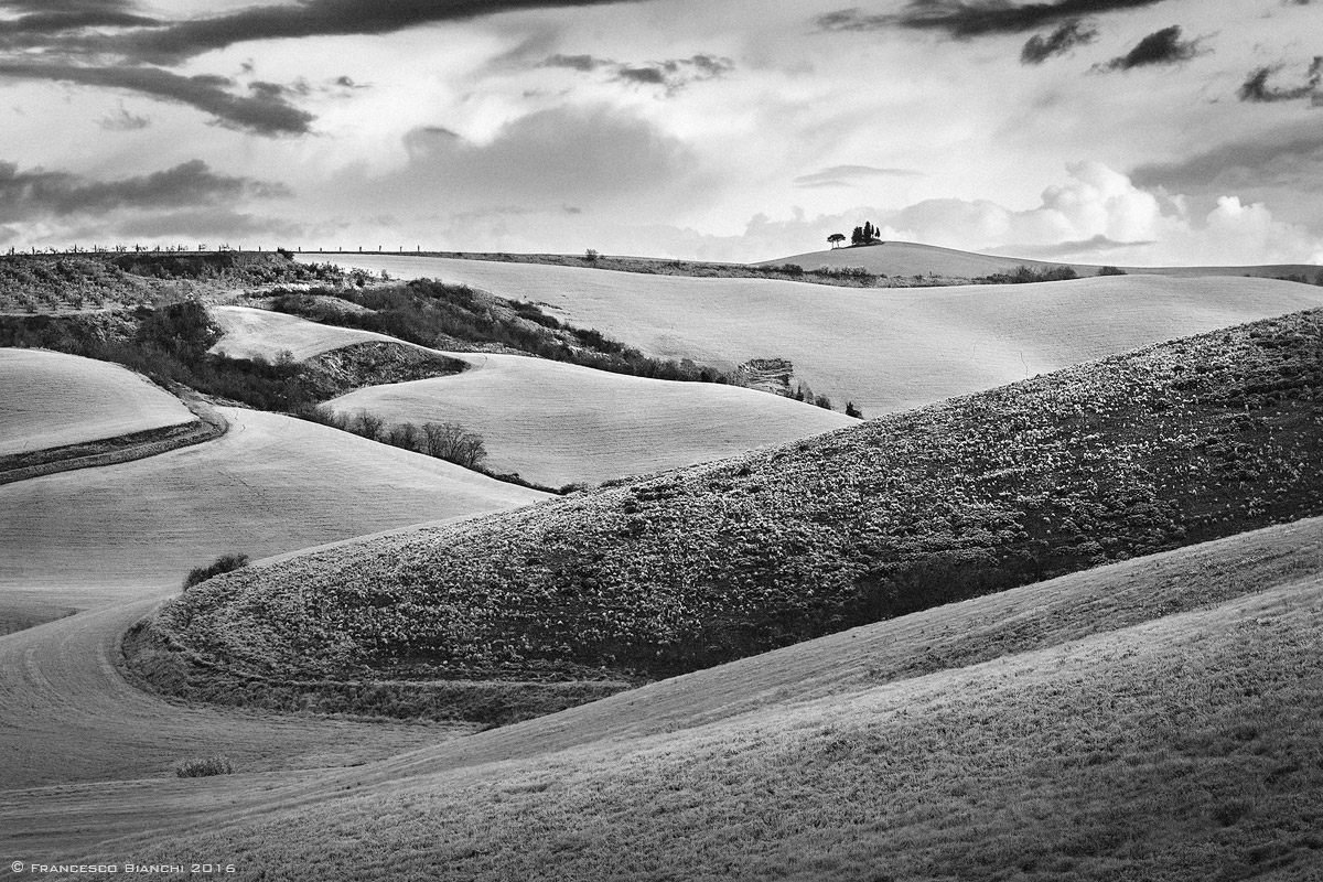 monochrome visions of the Tuscan hills...