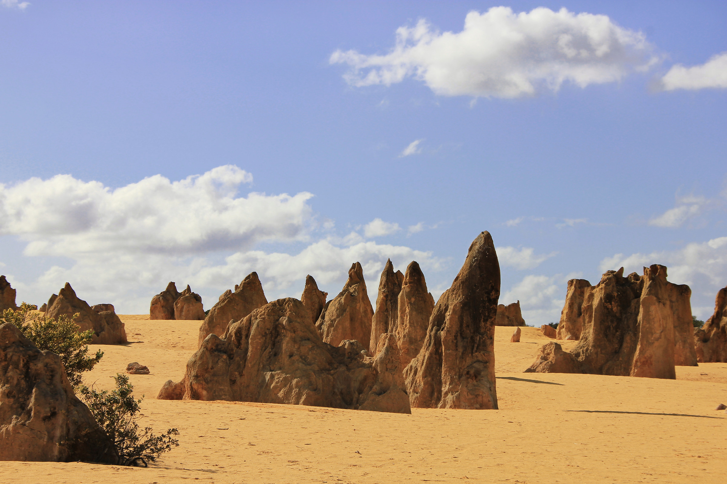 Pinnacle's Desert...