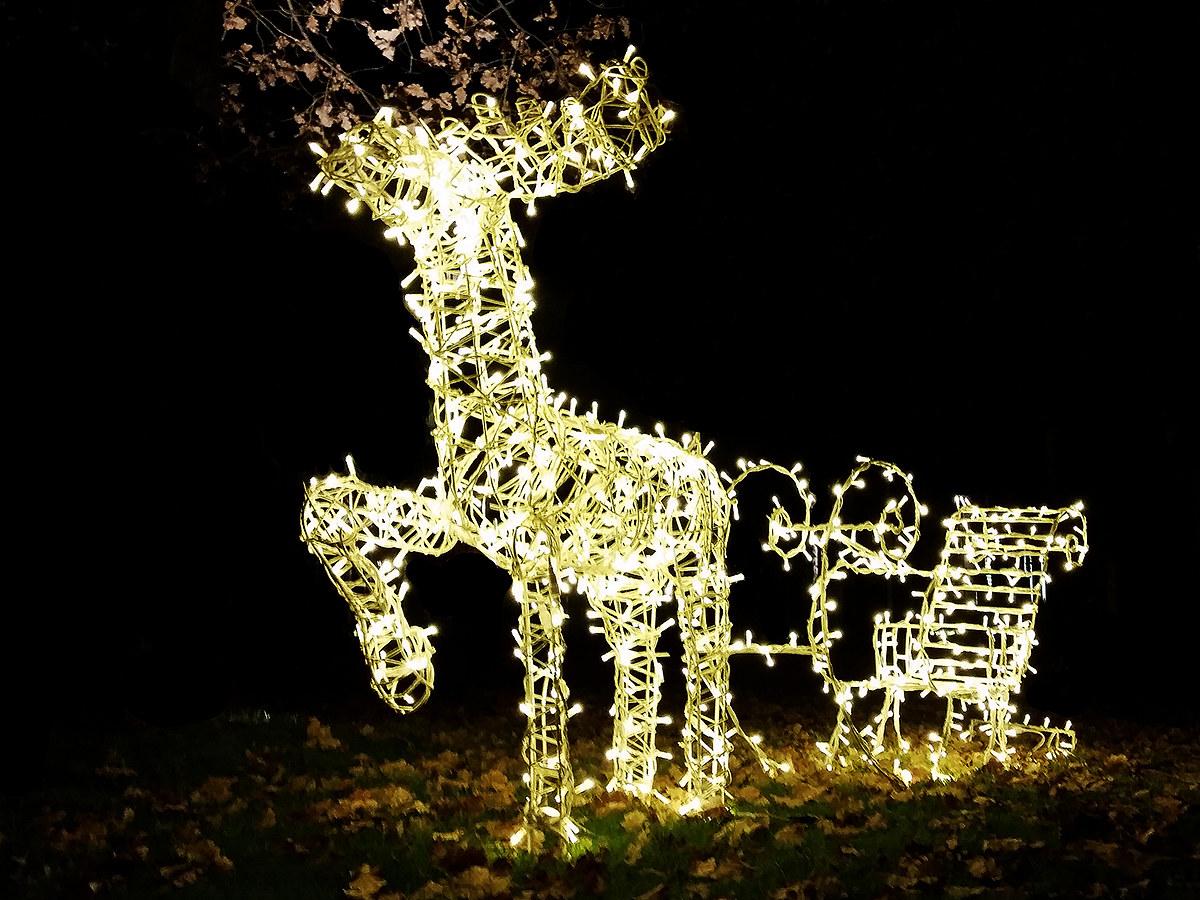 Christmas......