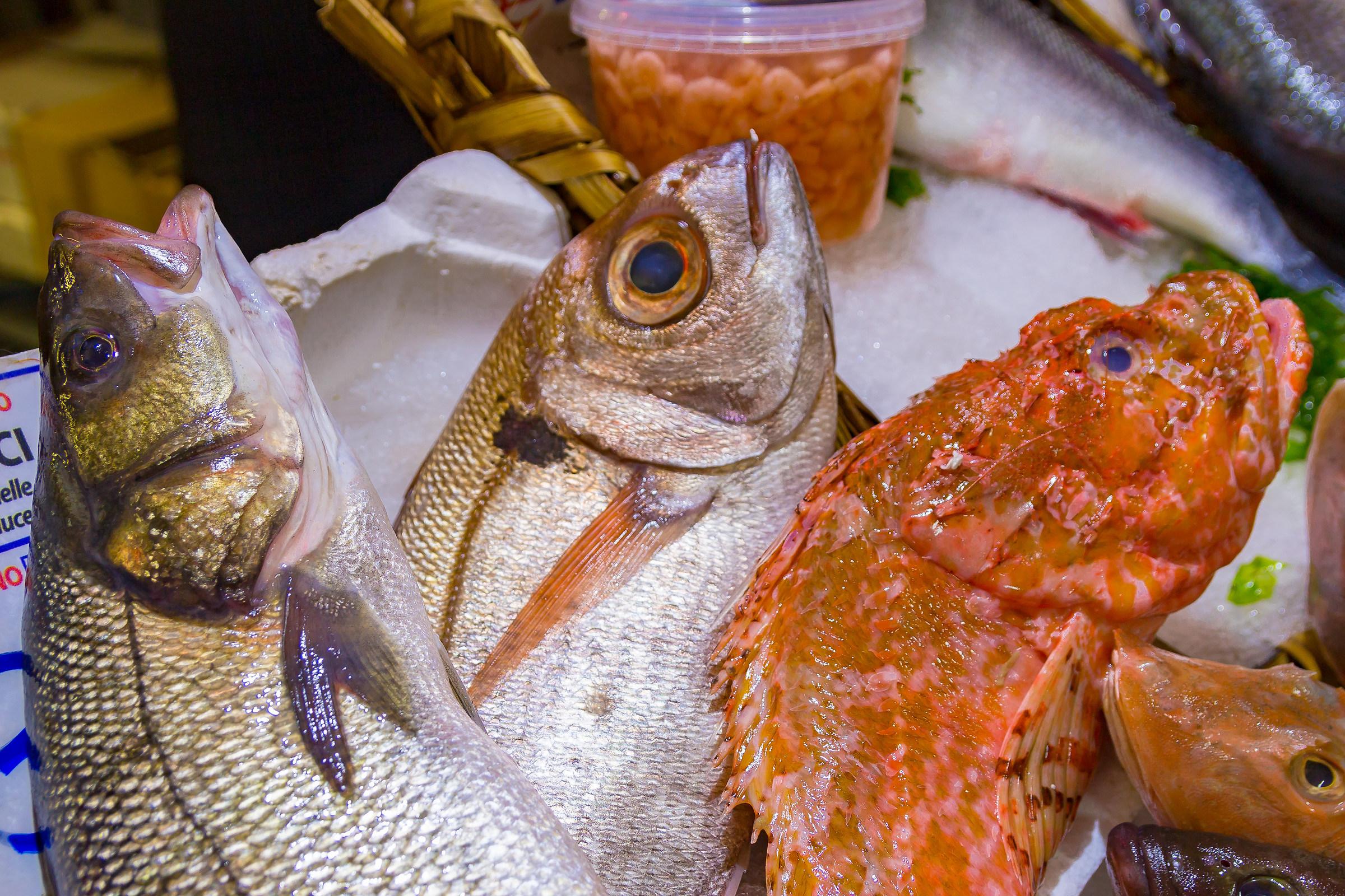 fish stalls for dinner on Christmas Eve...