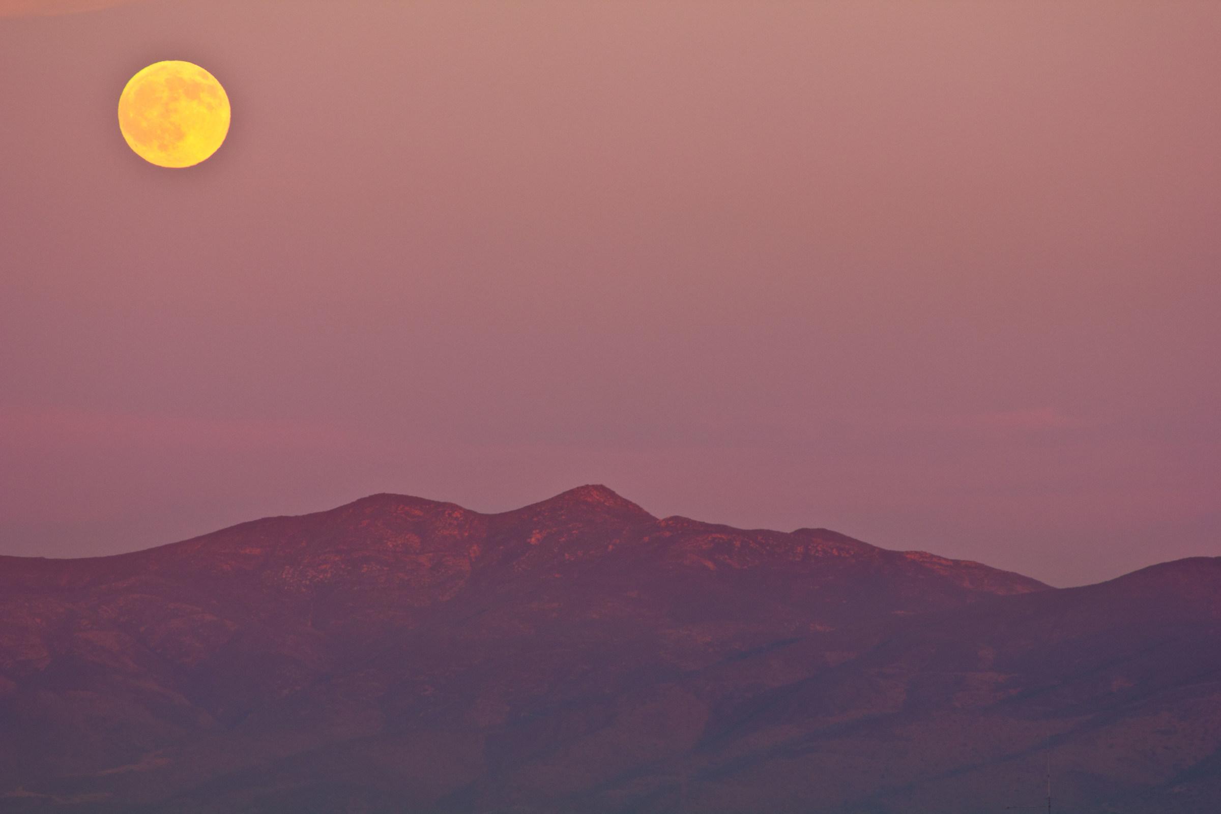 August Moon...