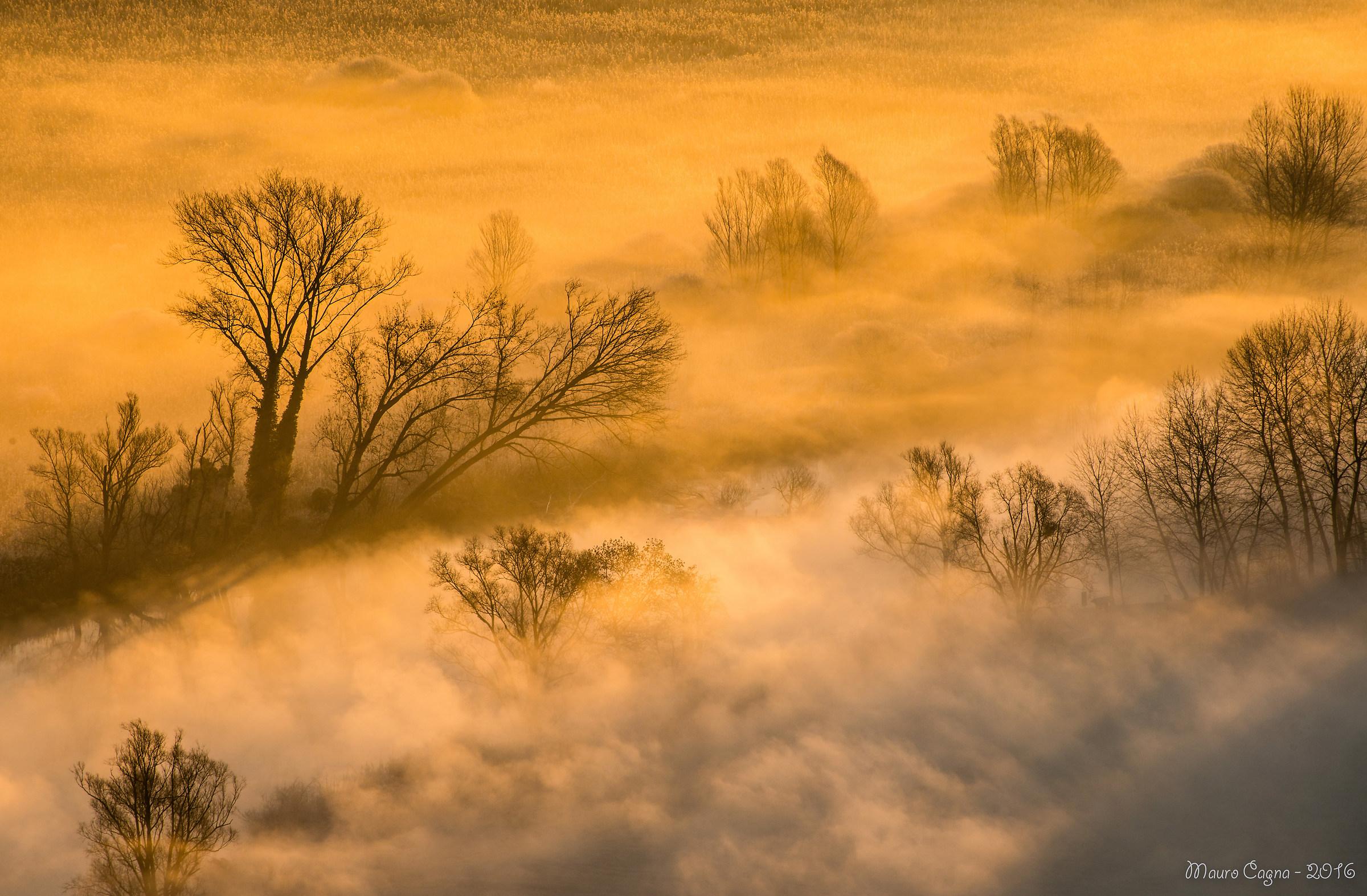 Alba e nebbia...