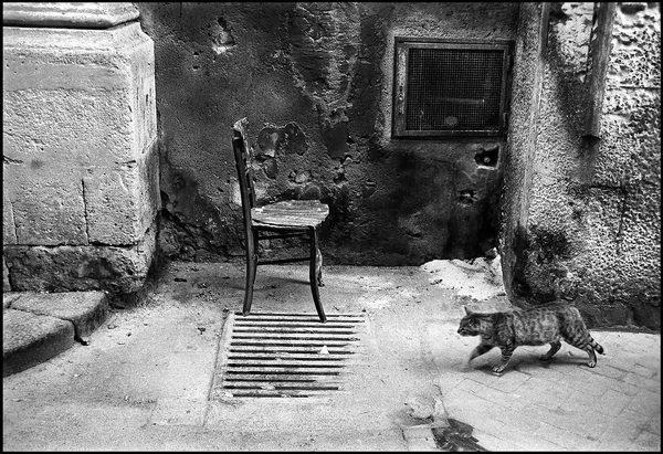 Il gatto e la sedia siracusa 1995 juzaphoto for Mercatino dell usato siracusa