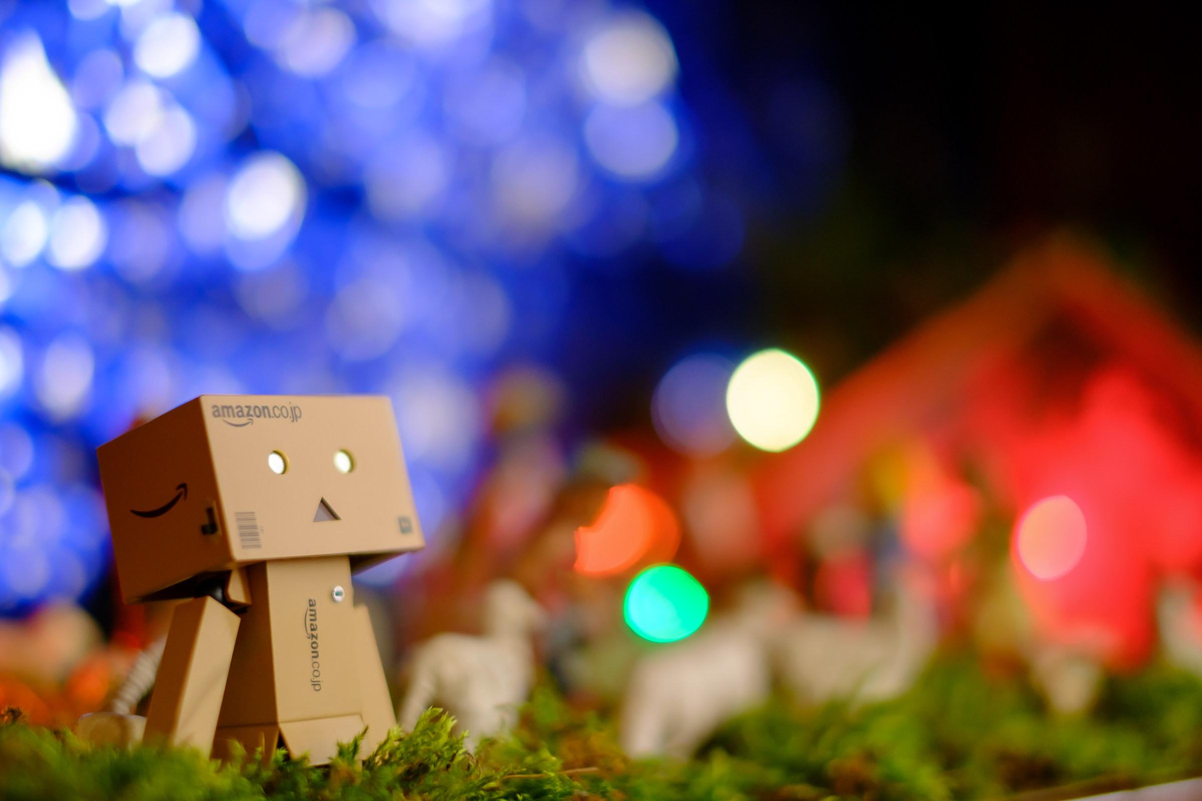 Danbo's Christmas lights...