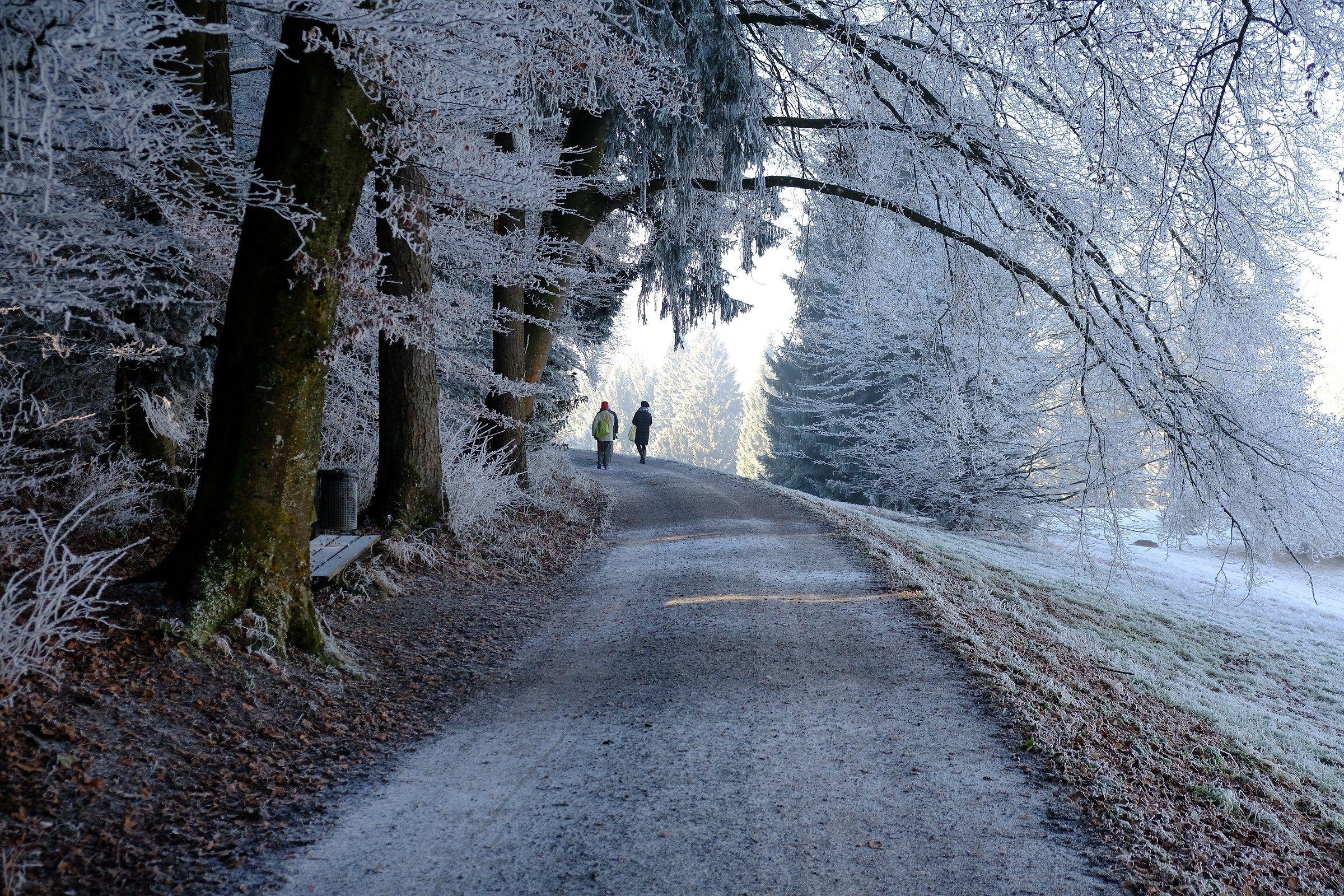 Il bianco sentiero...