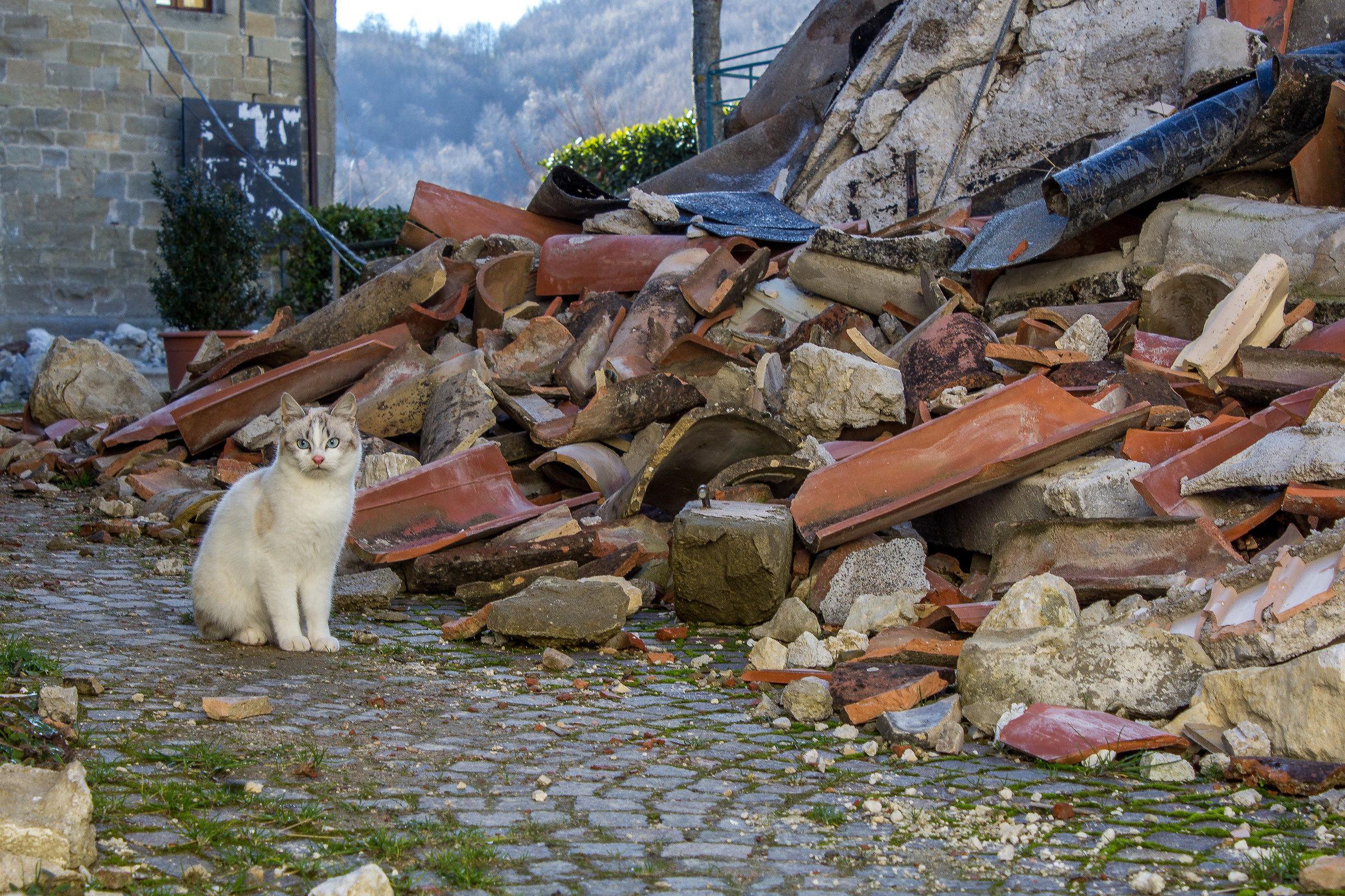 Castro Montegallo - Earthquake 2016...