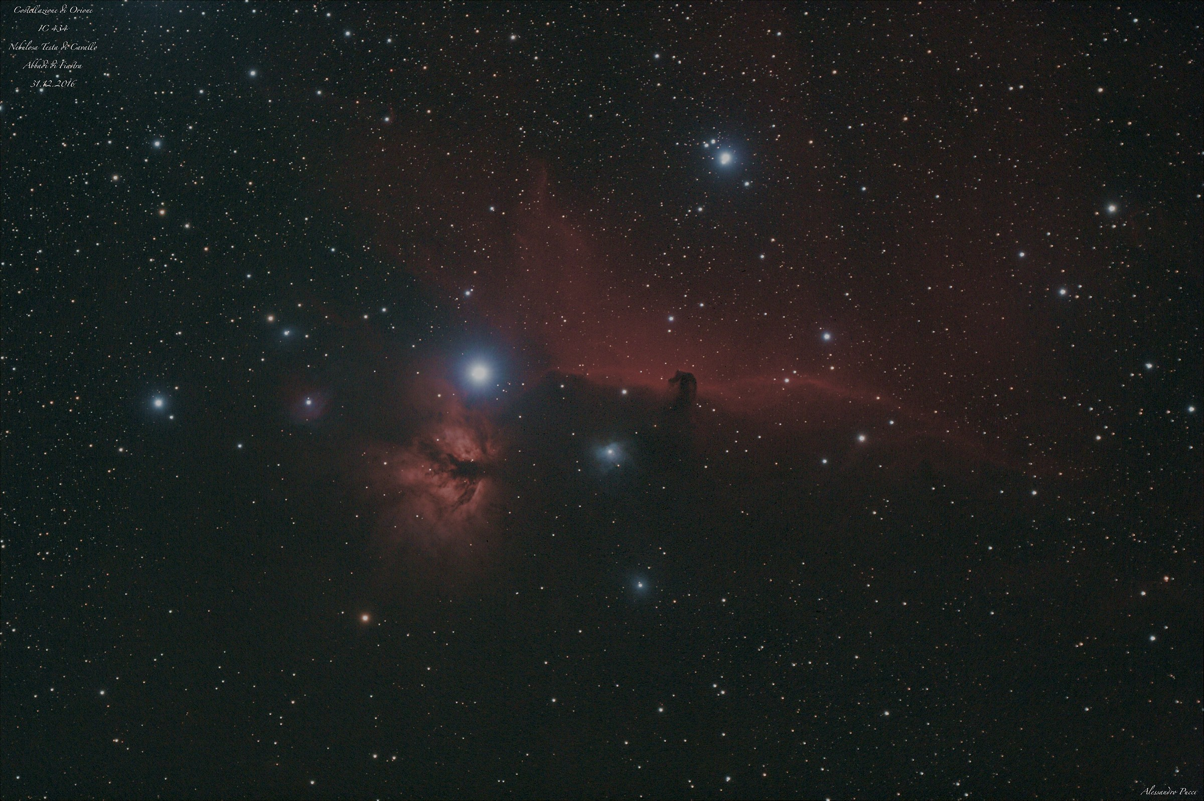 Horse Head in Orion...