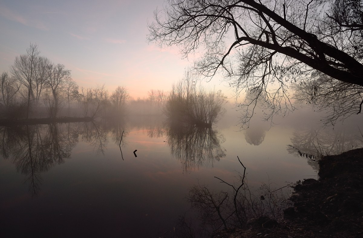 Reflections in the fog...