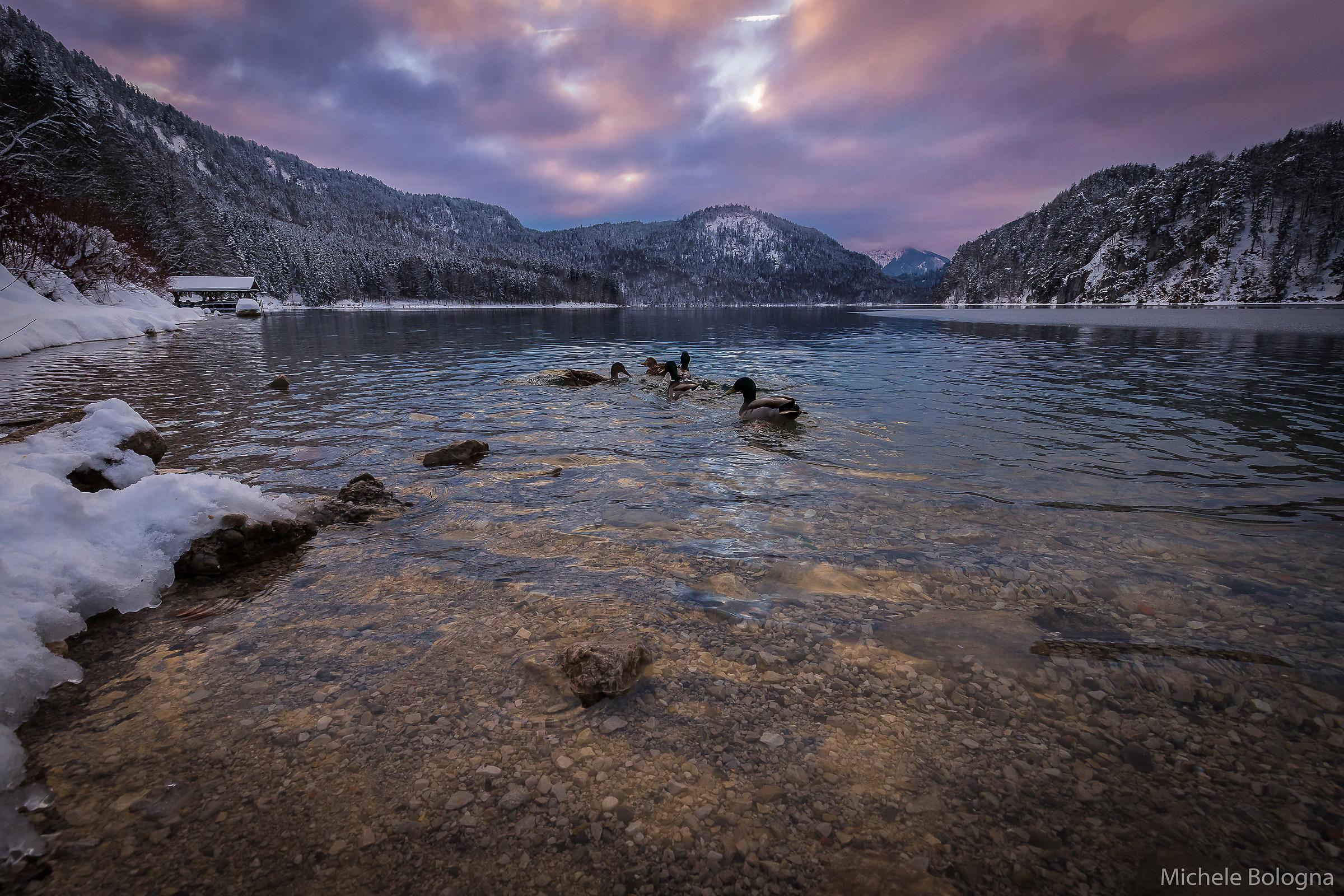 Sunset at Lake Alpsee...