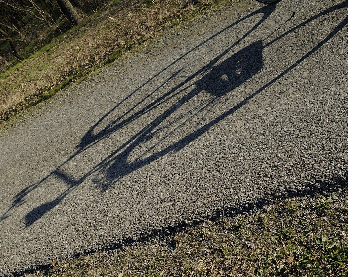 La sua ombra....