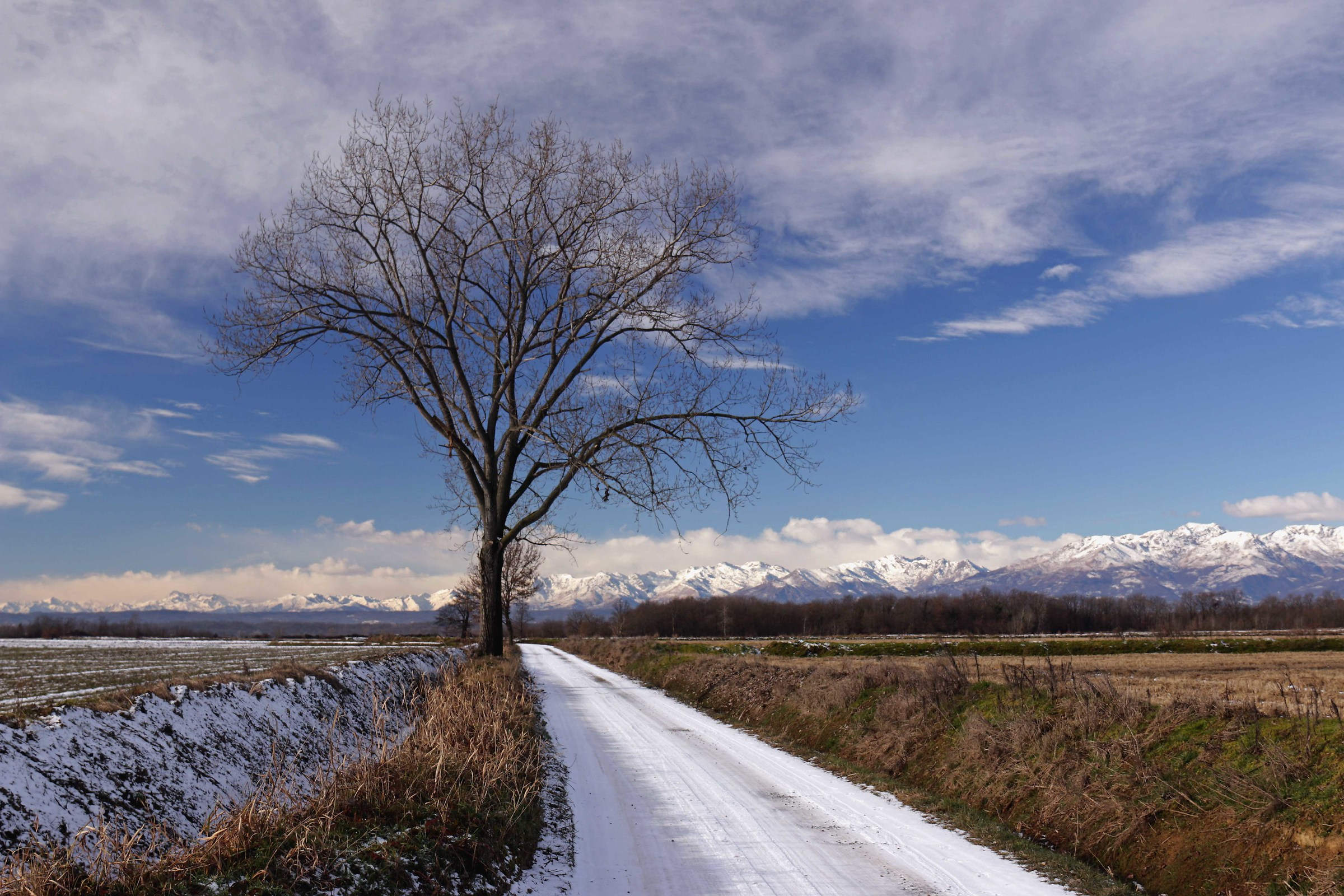 Morning winter '...