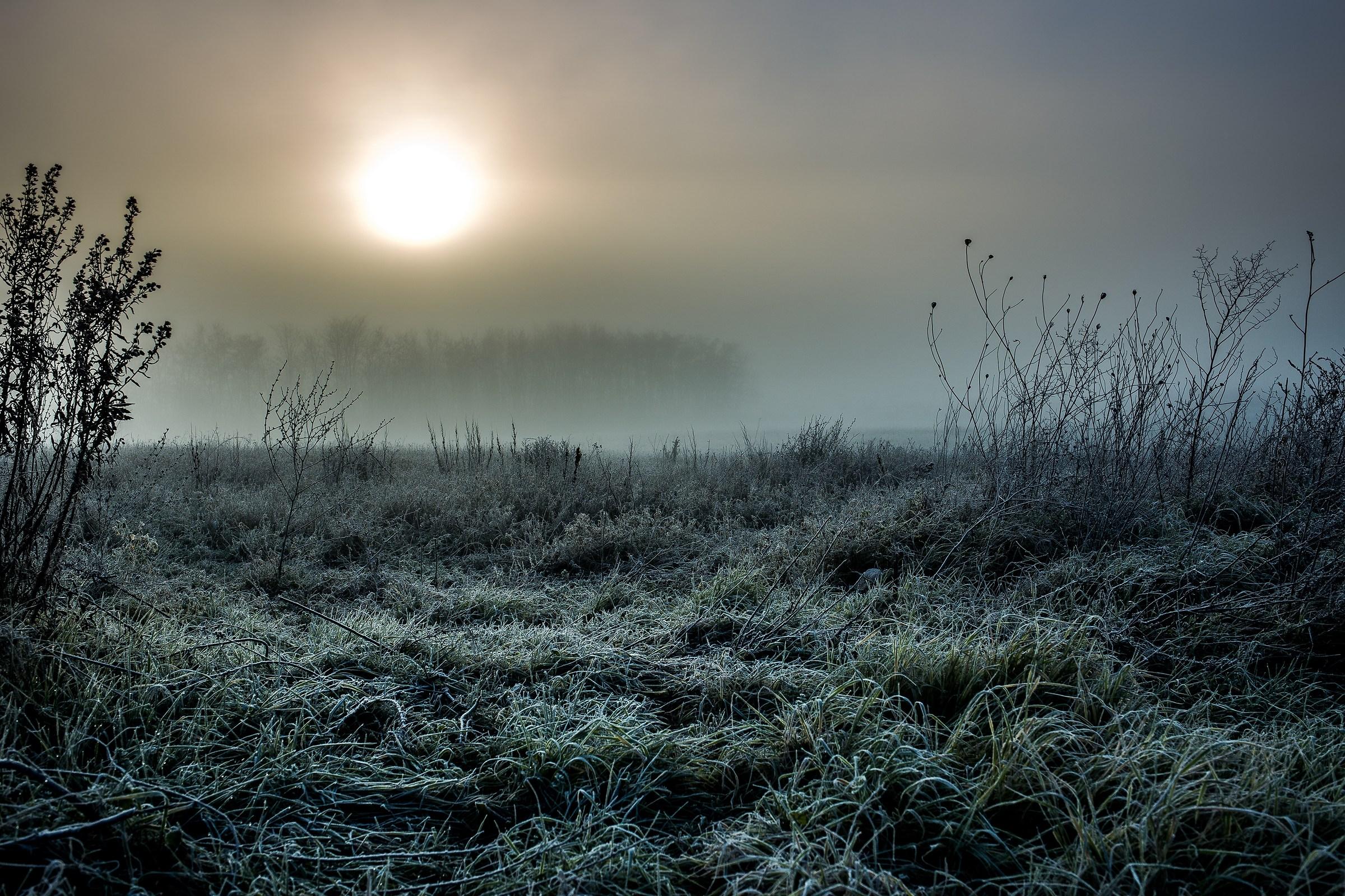 A frosty dawn...