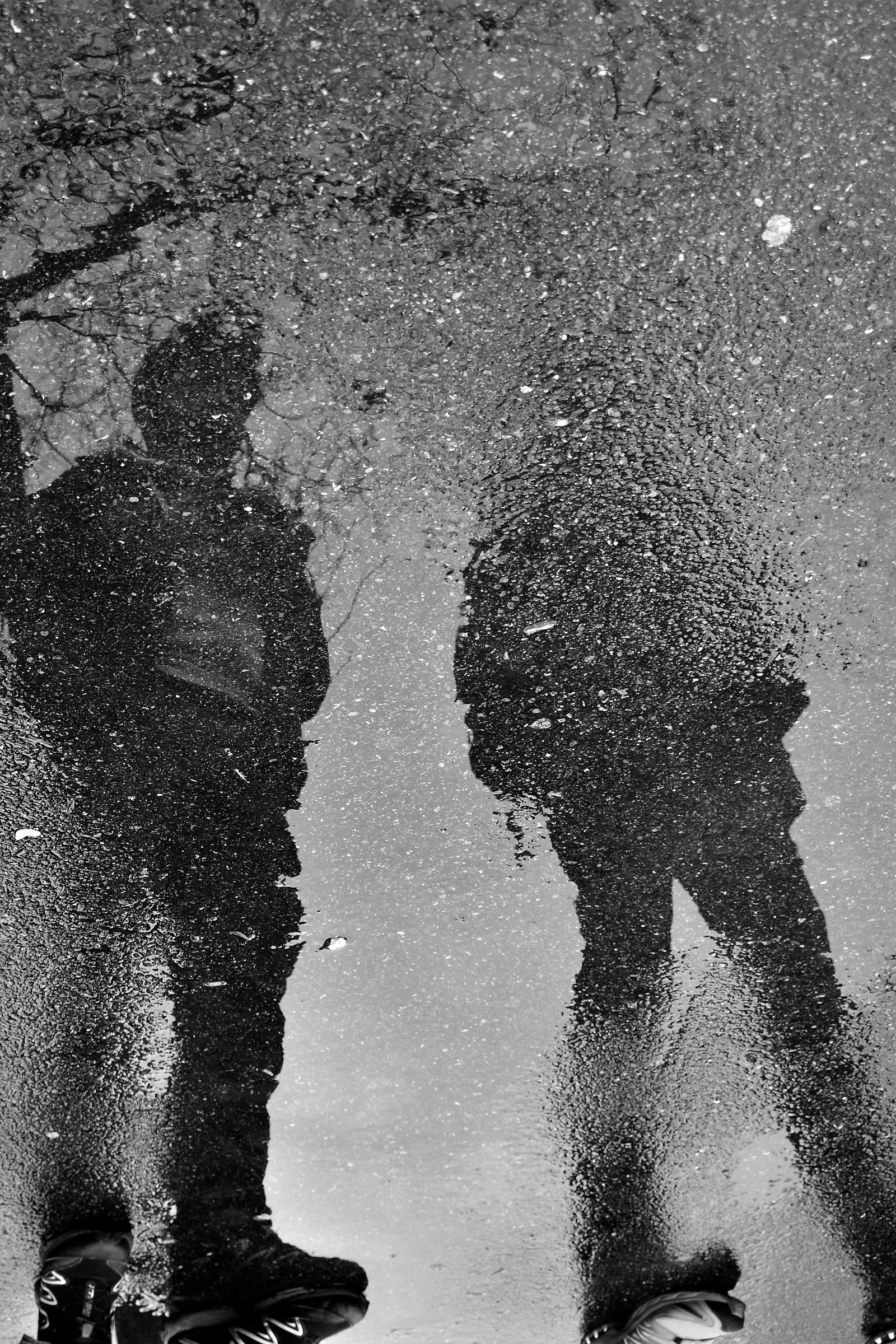 Reflected in the puddle...