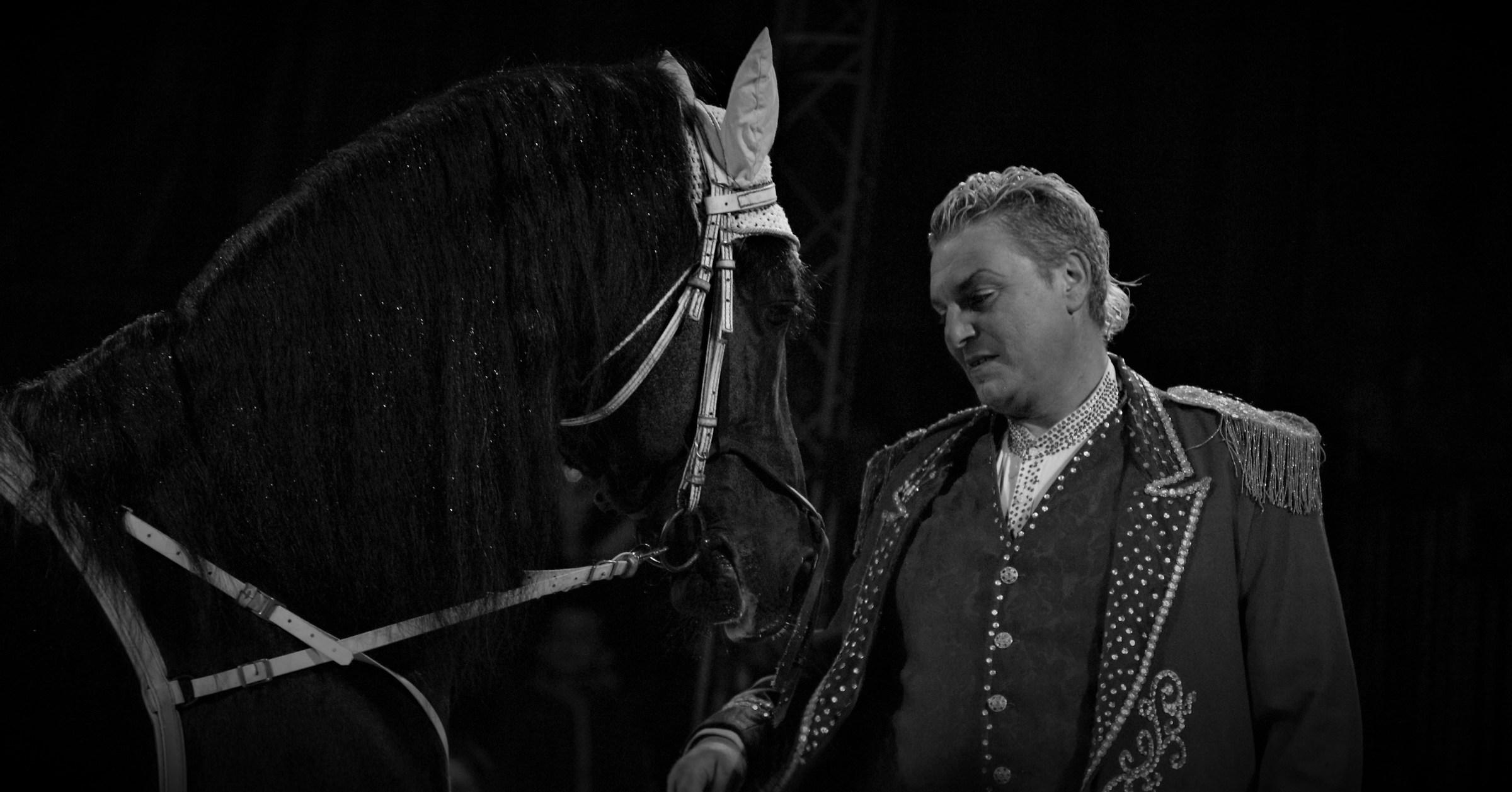 Il domatore di cavalli...