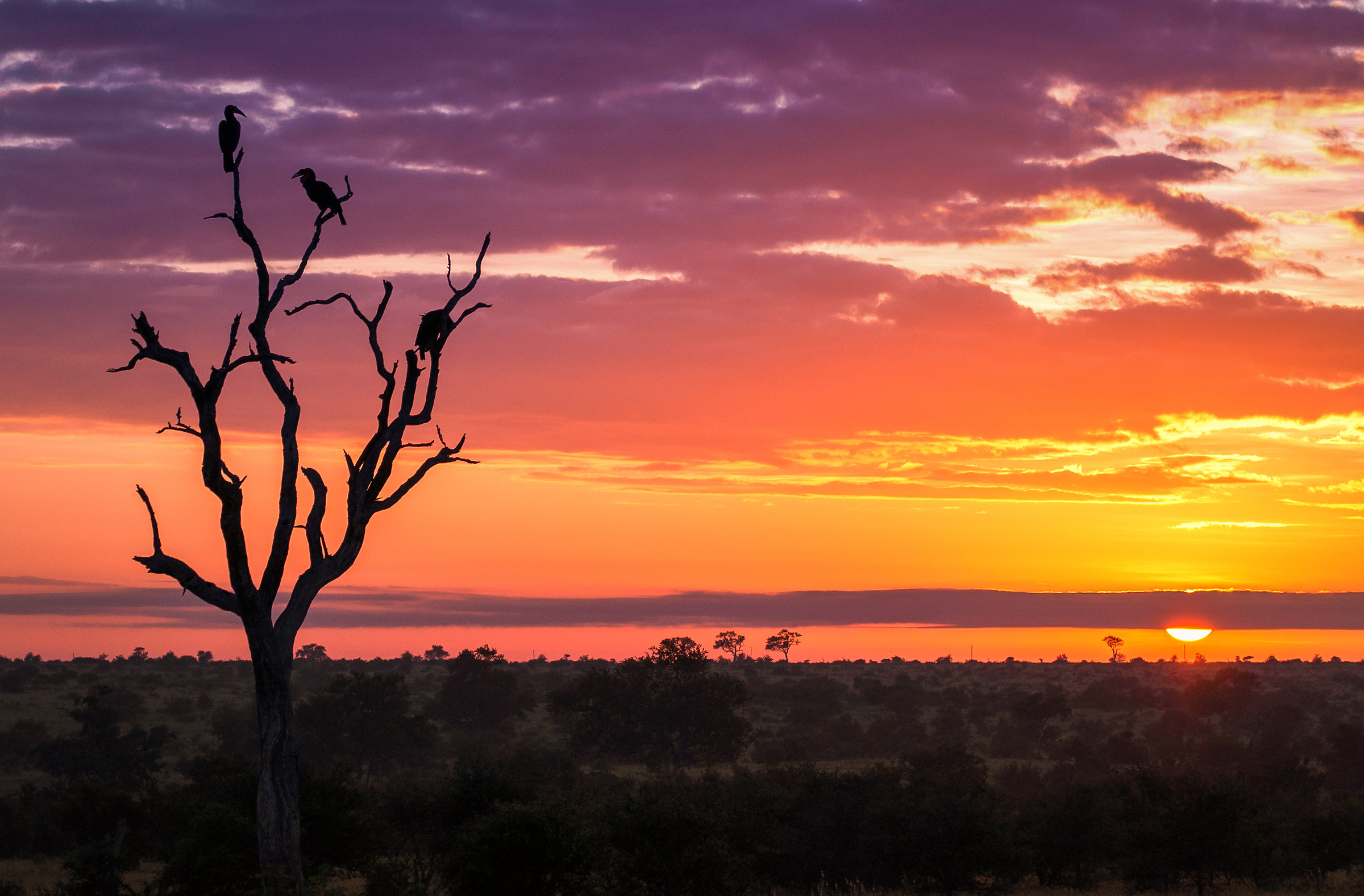 Sunrise at Kruger...