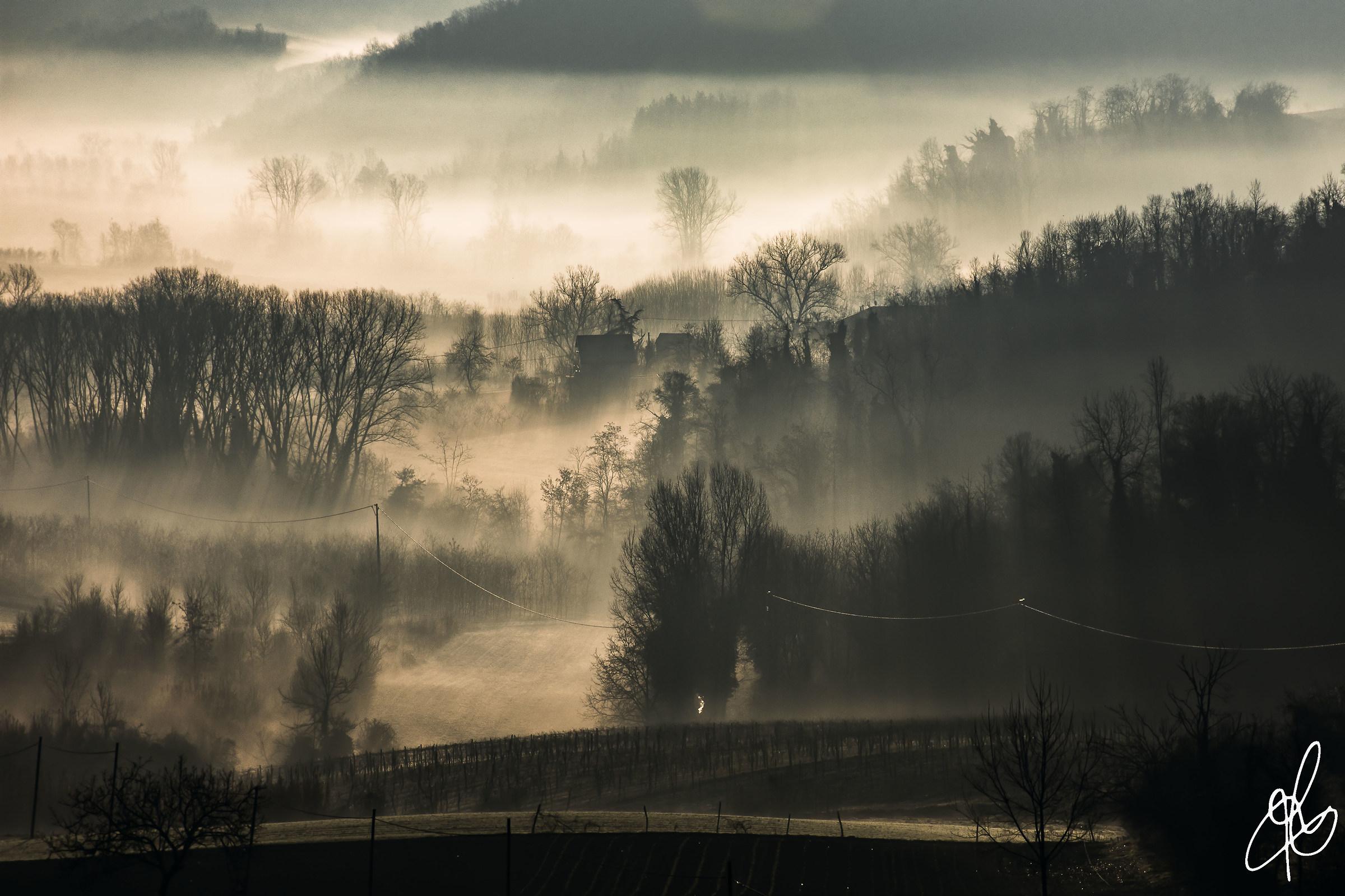 mists Monferrine...