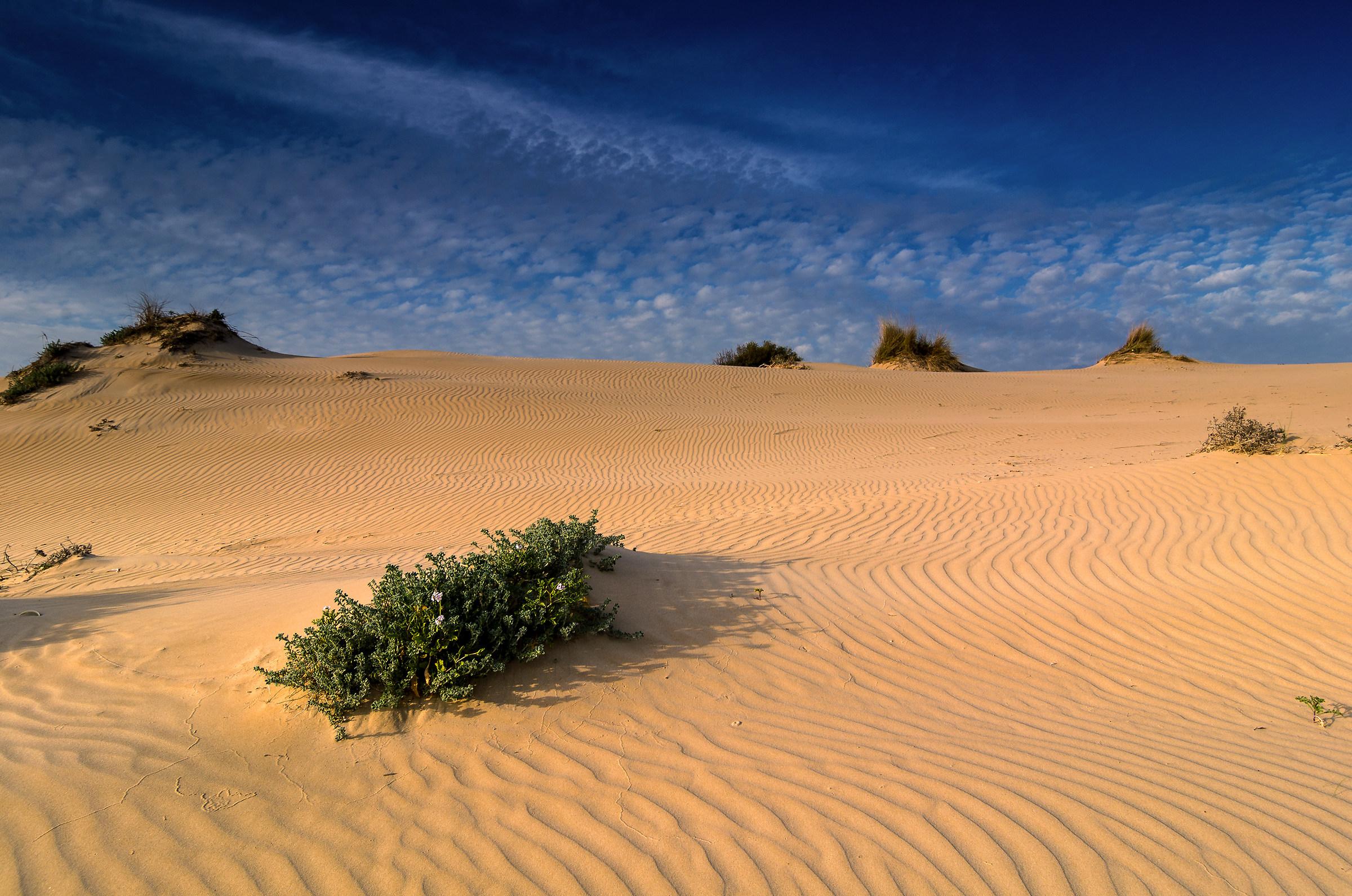 sabbia e cielo...