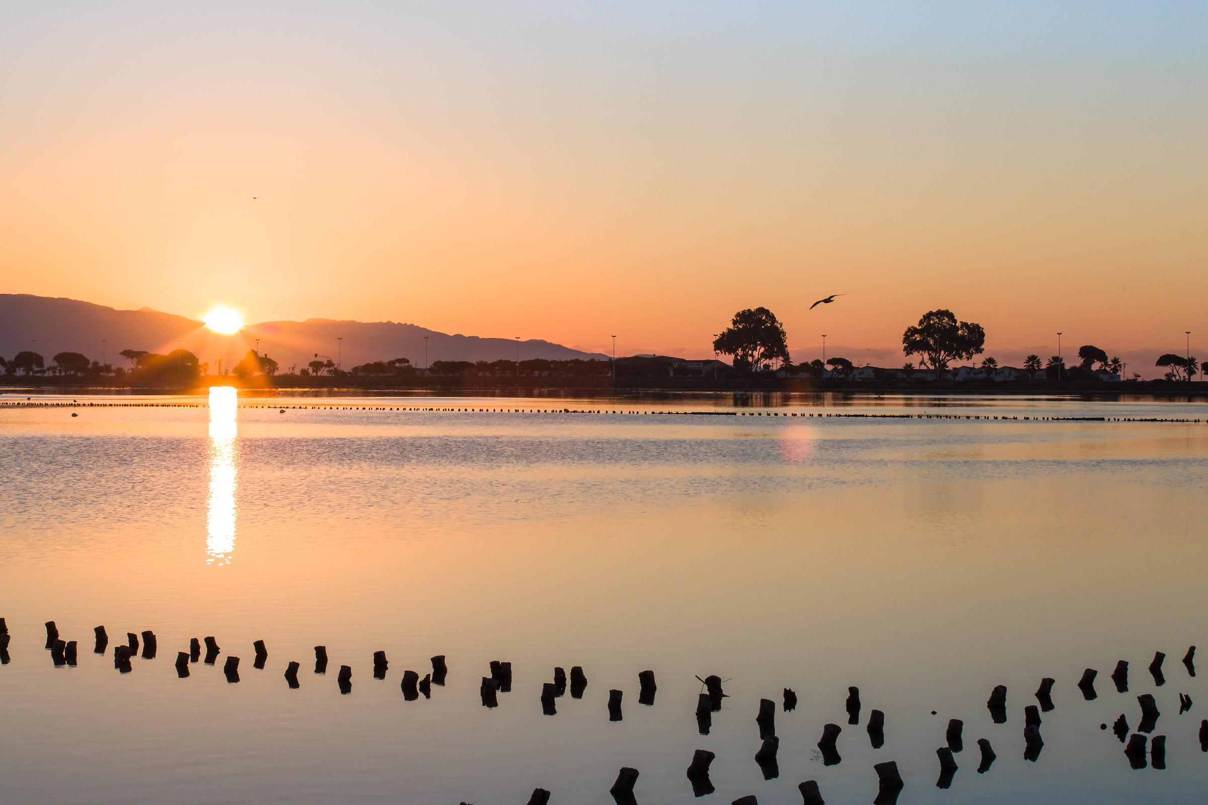 Sunrise on the pond...