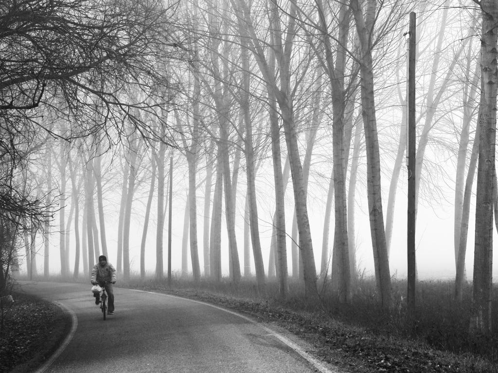 Girardengo in the fog...