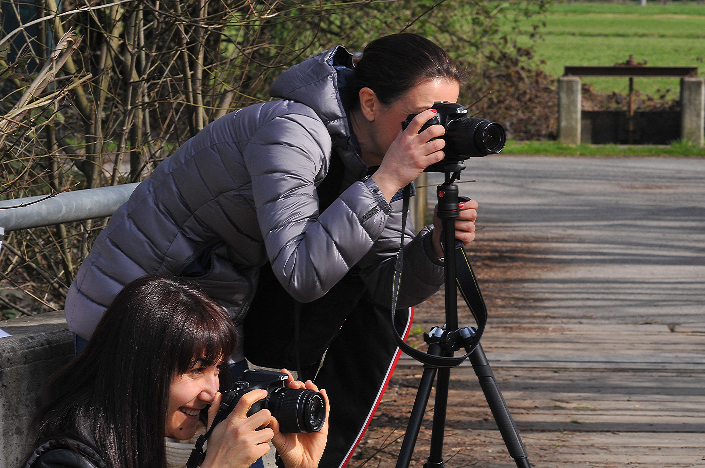 Nikon & Canon...