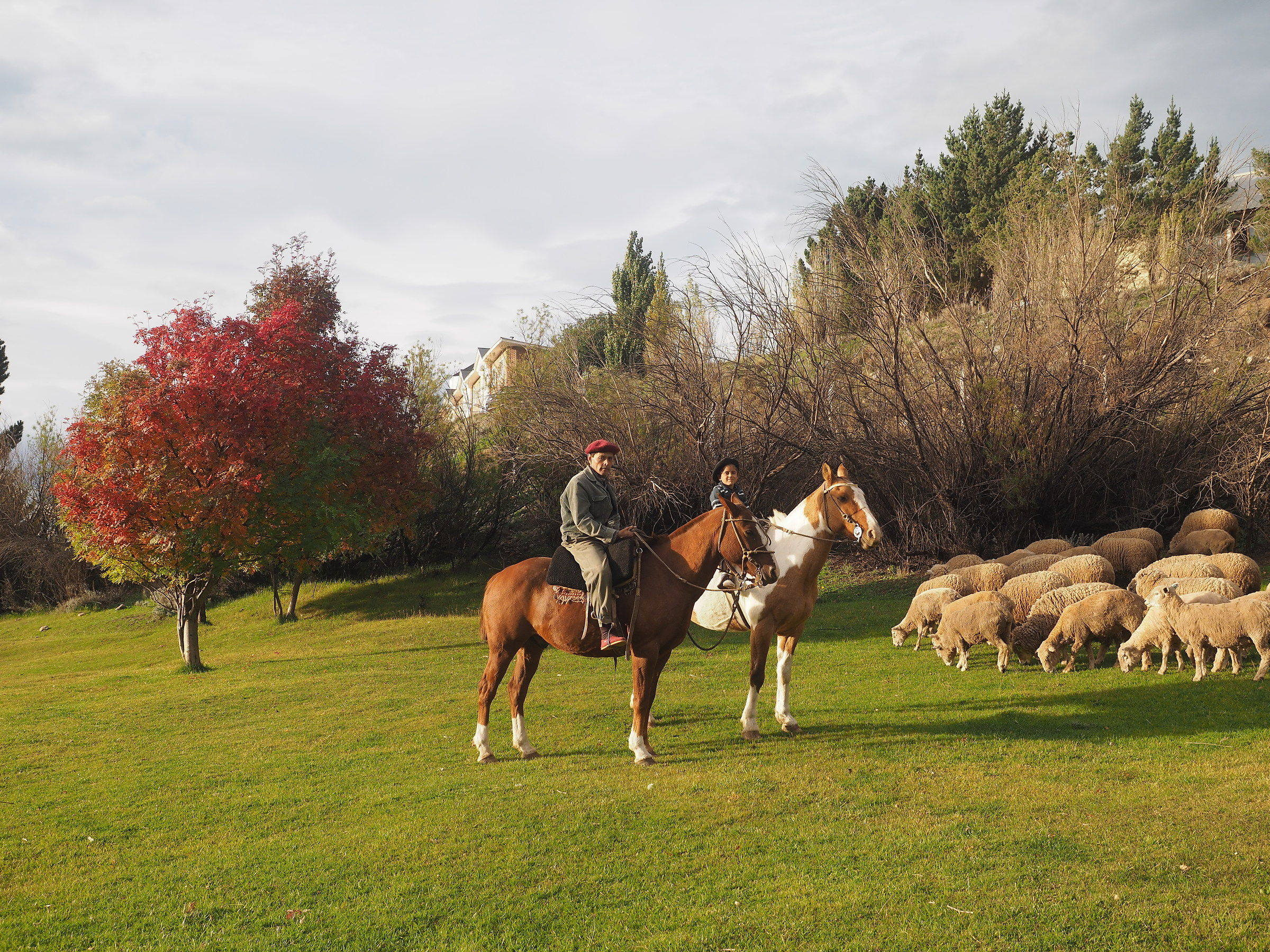 Estancia in Patagonia with Gaucho and Gaucho Young...