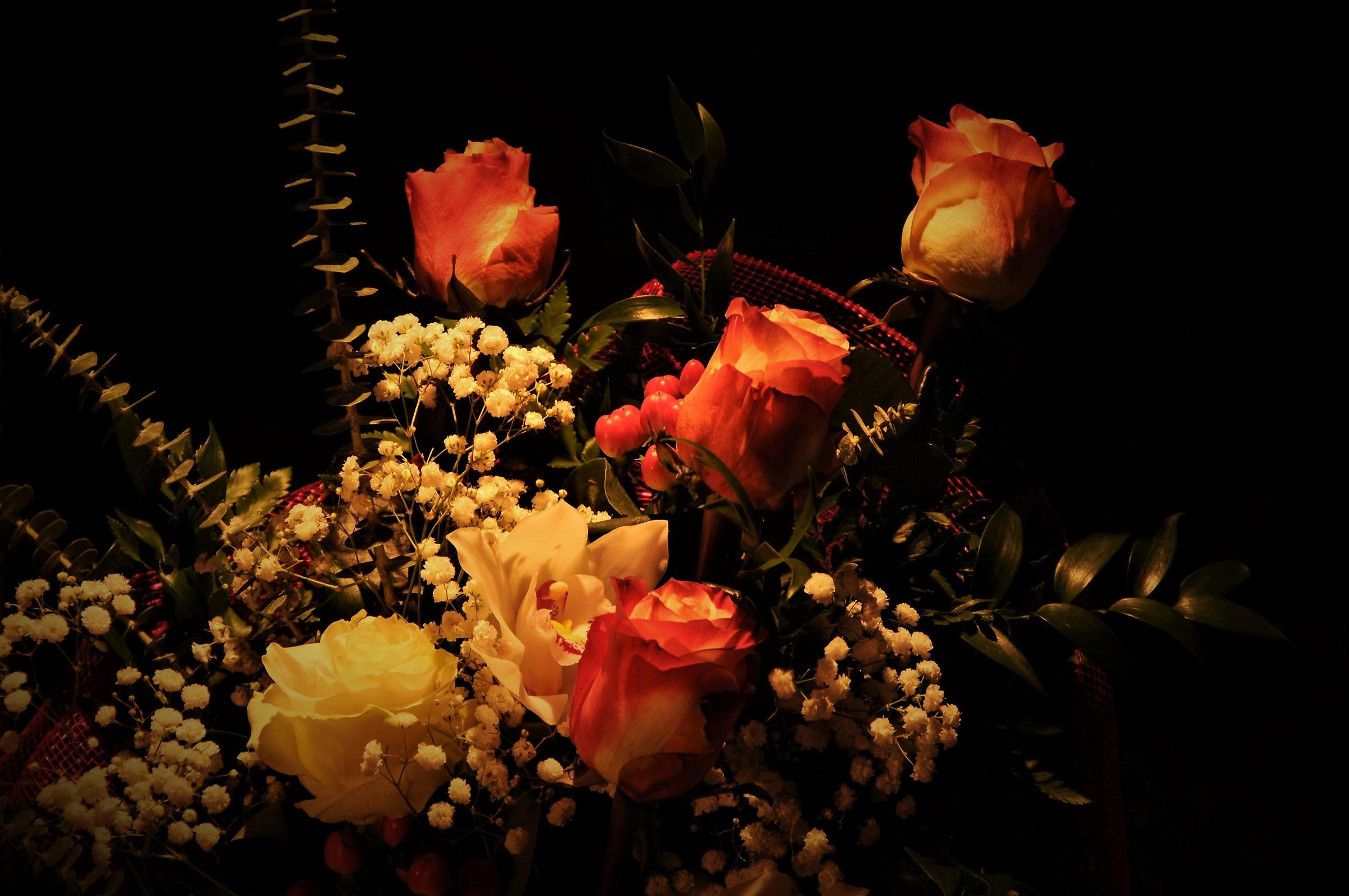 4 roses plus a...