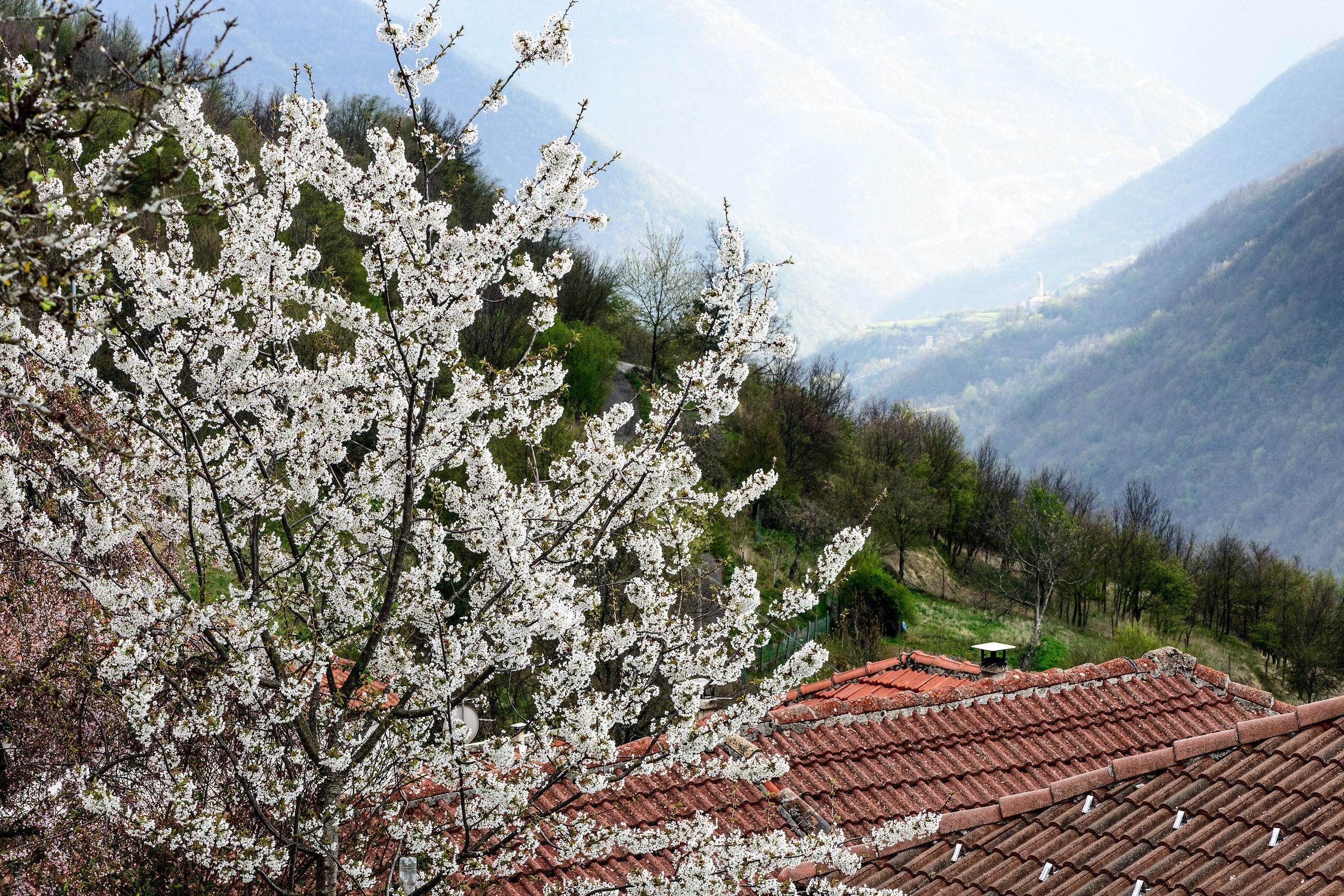 Primavera nell'Alto Appennino...