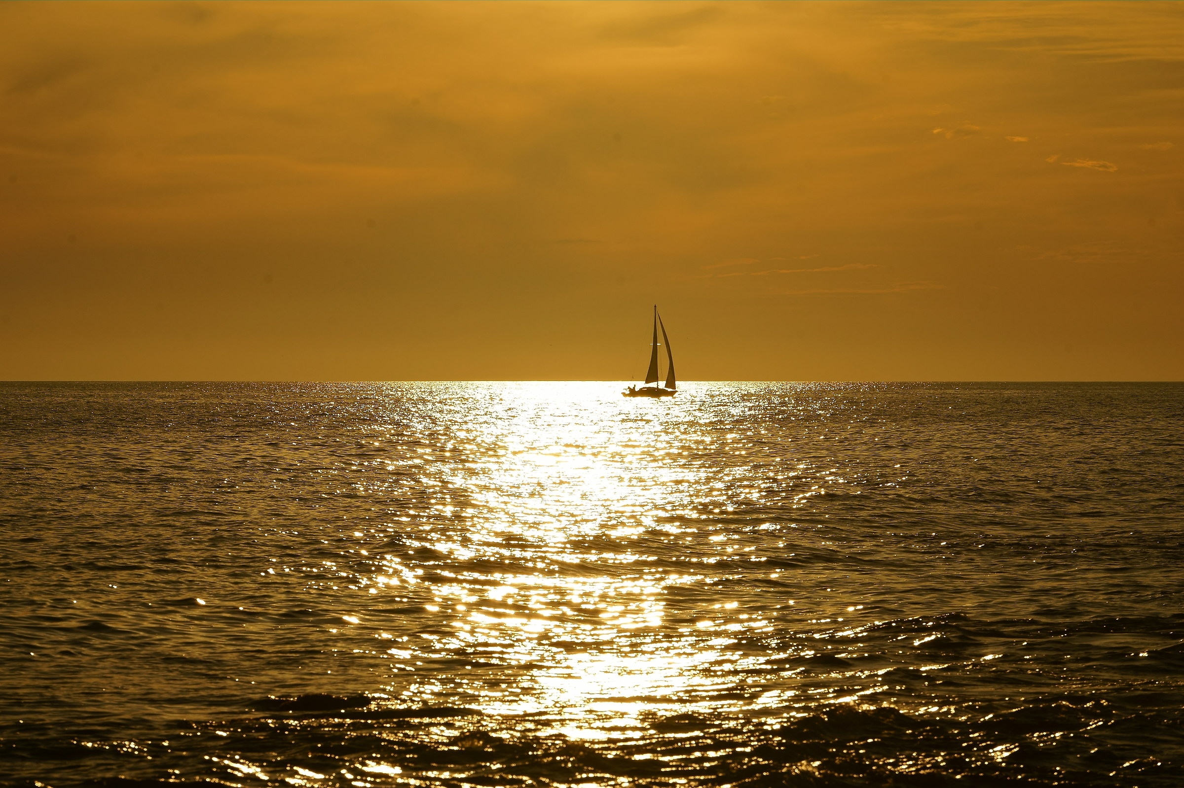 surf in gold...