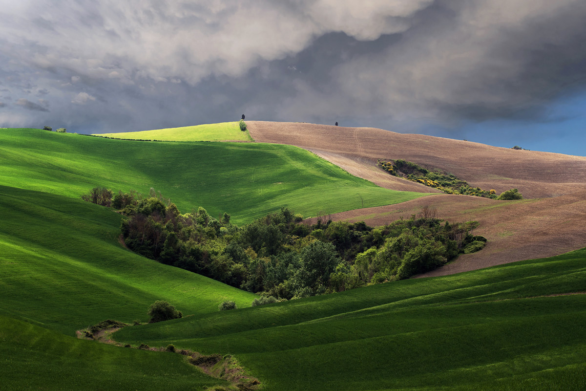 Orcia colors...