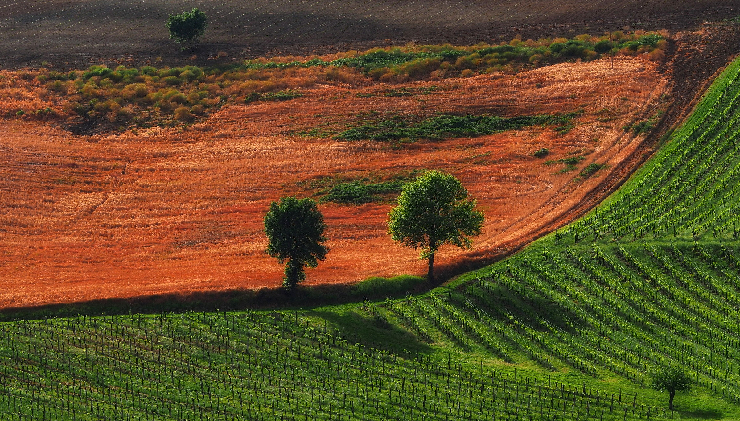 Montalbano Toscana...