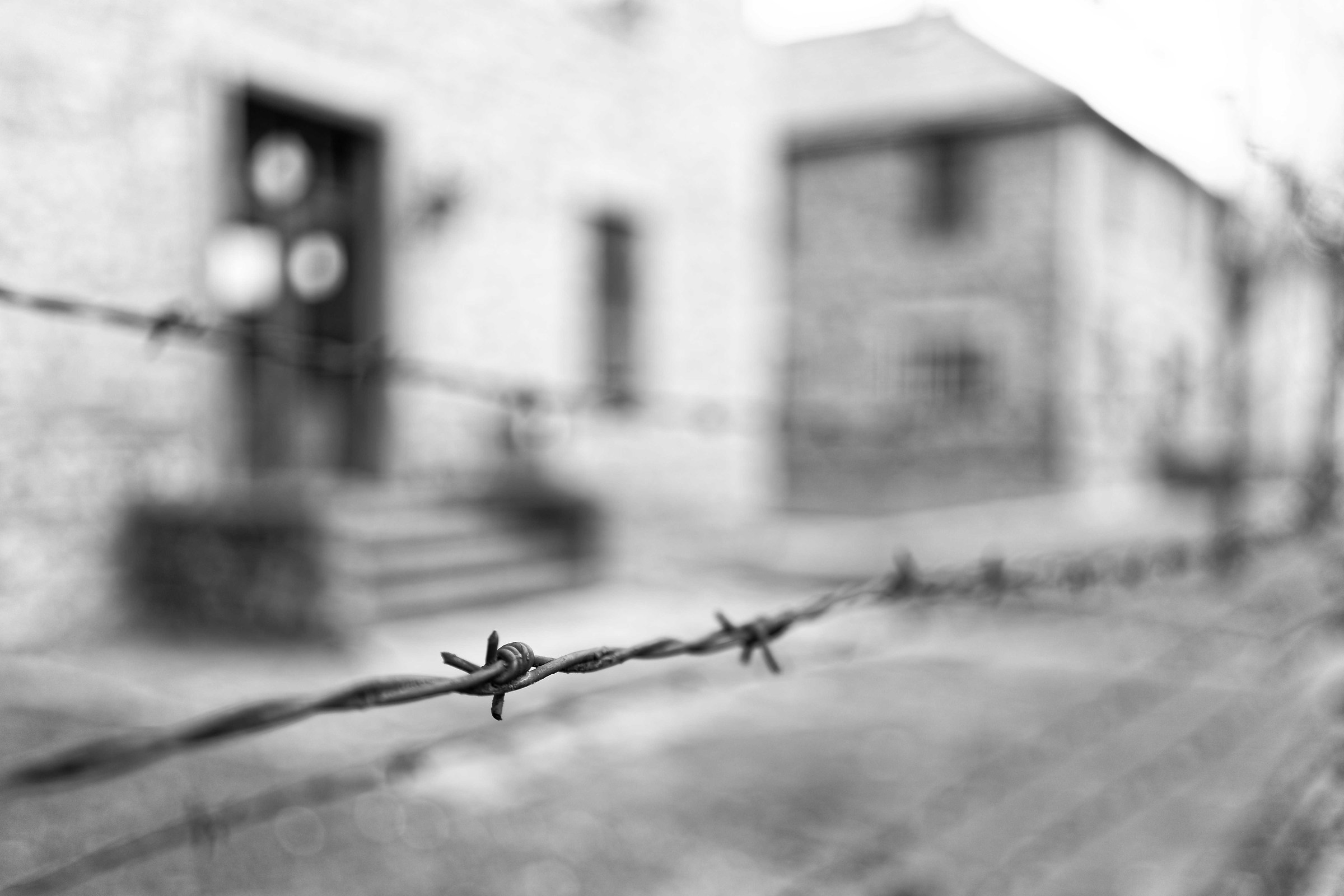 Auschwitz-Birkenau...