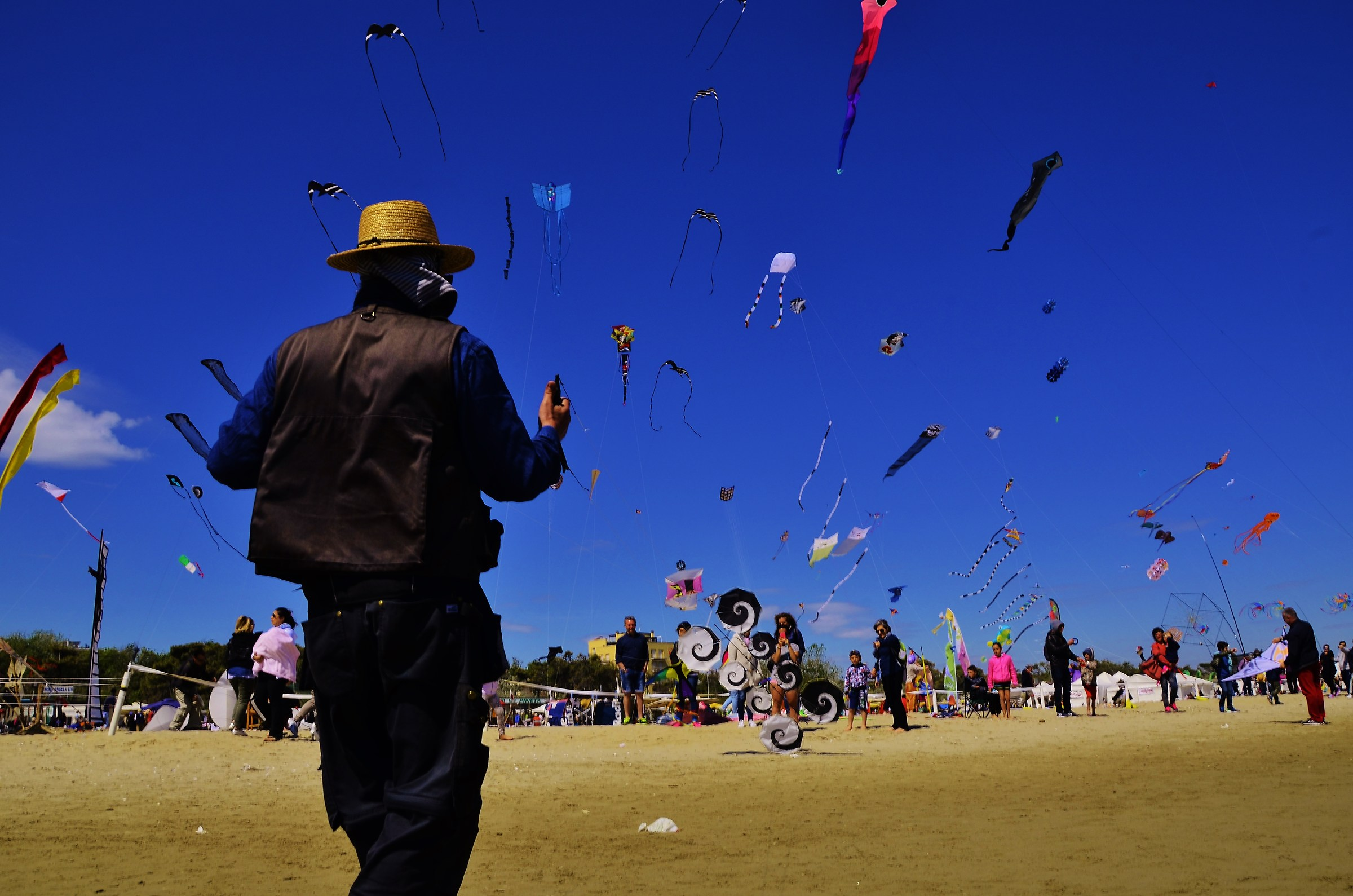 The kings of the kites...