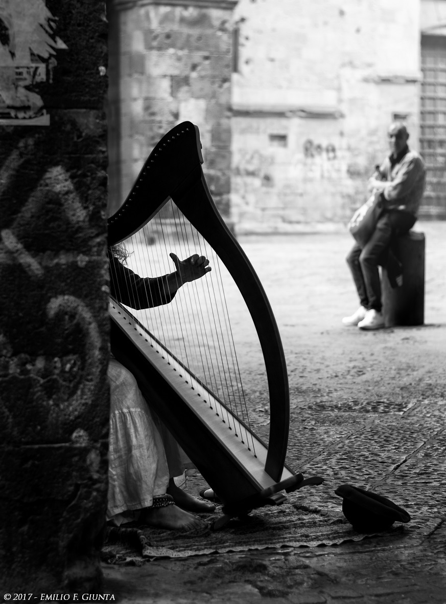 The harpist...