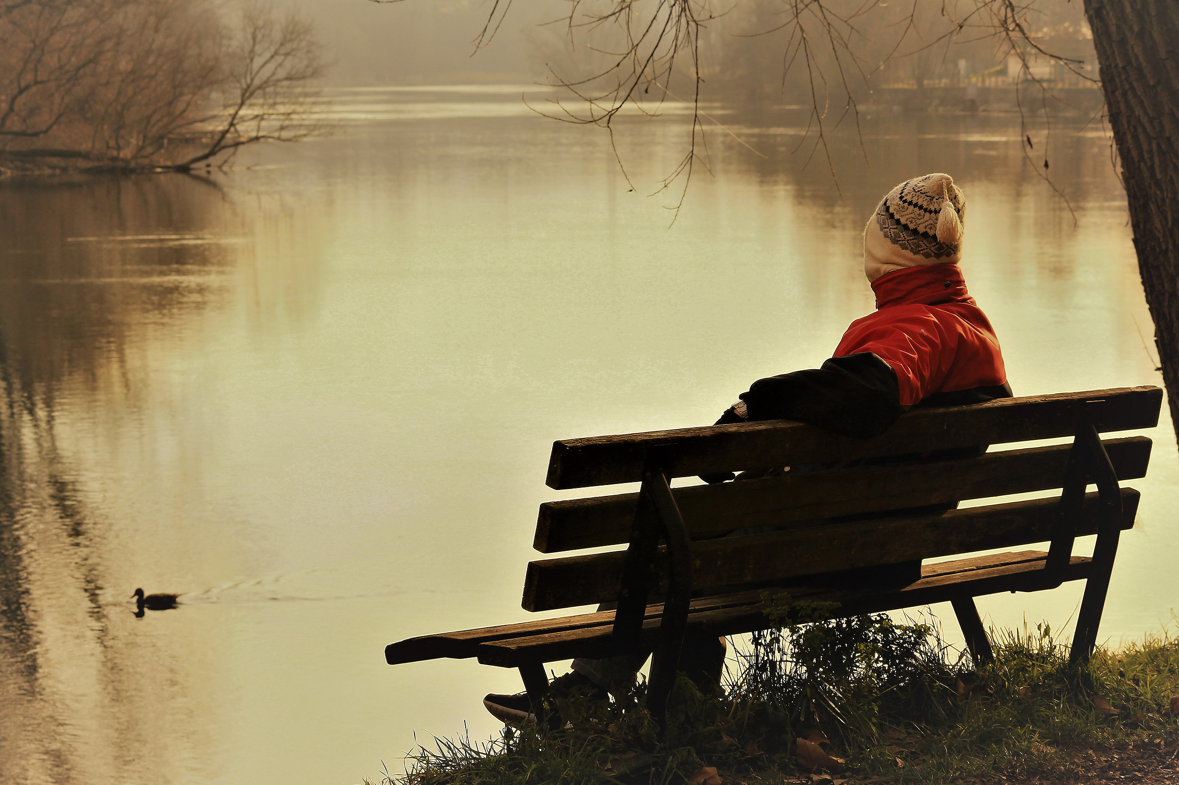 ... Contemplating ......
