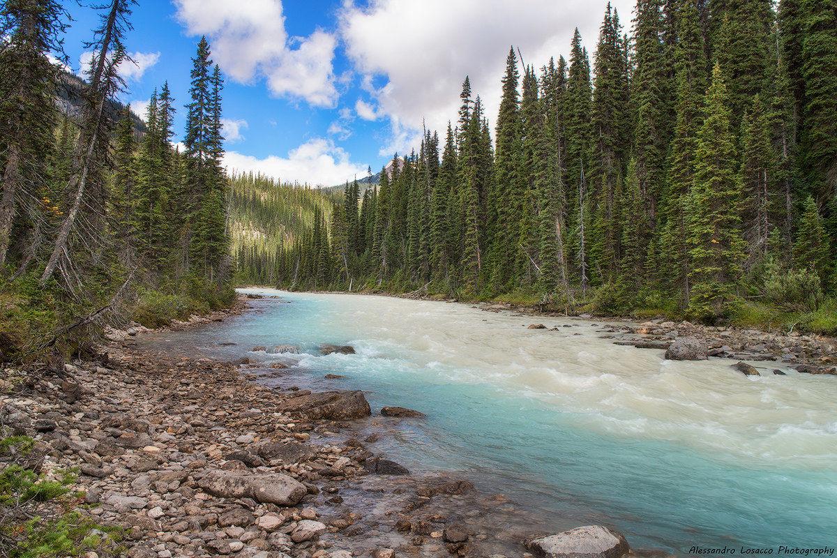 Yoho river...