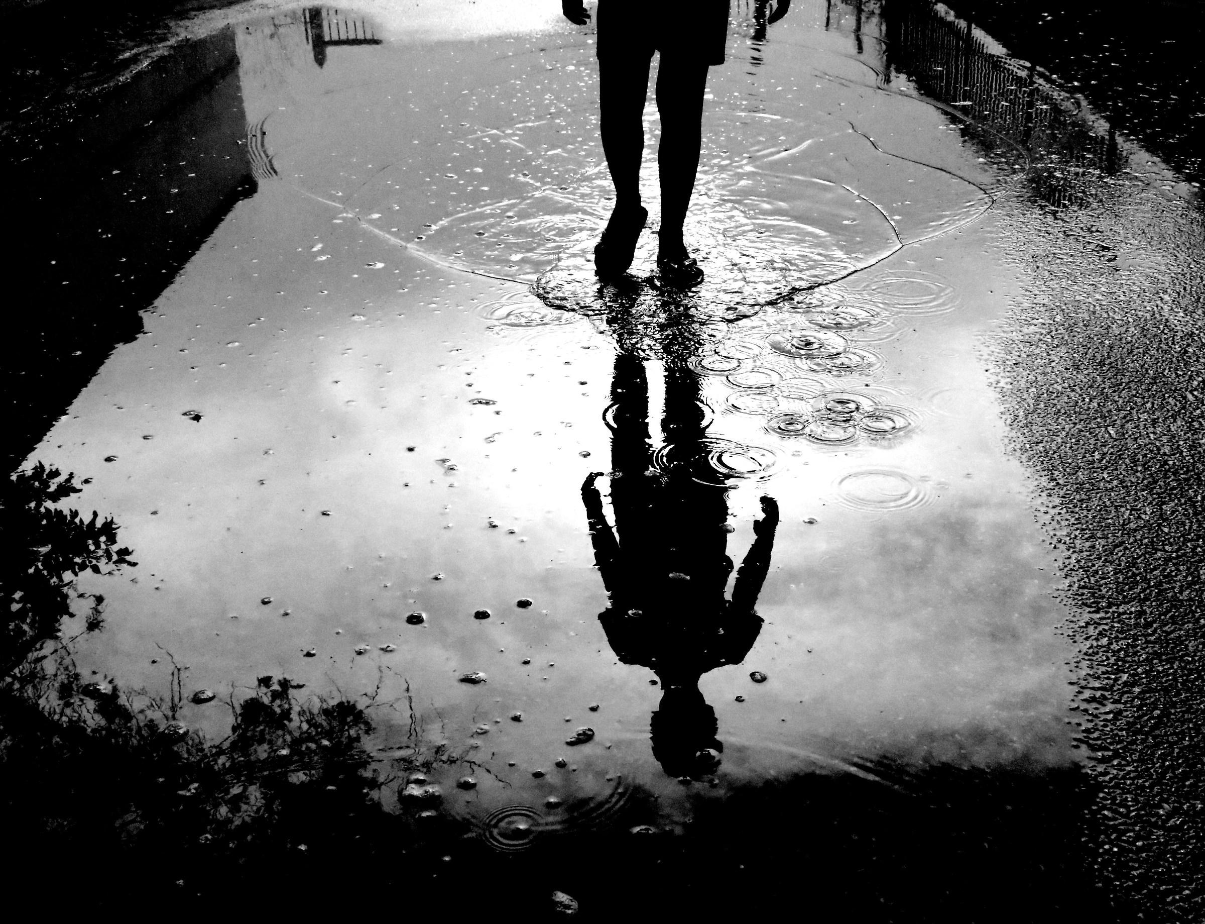 Shadow in the rain...