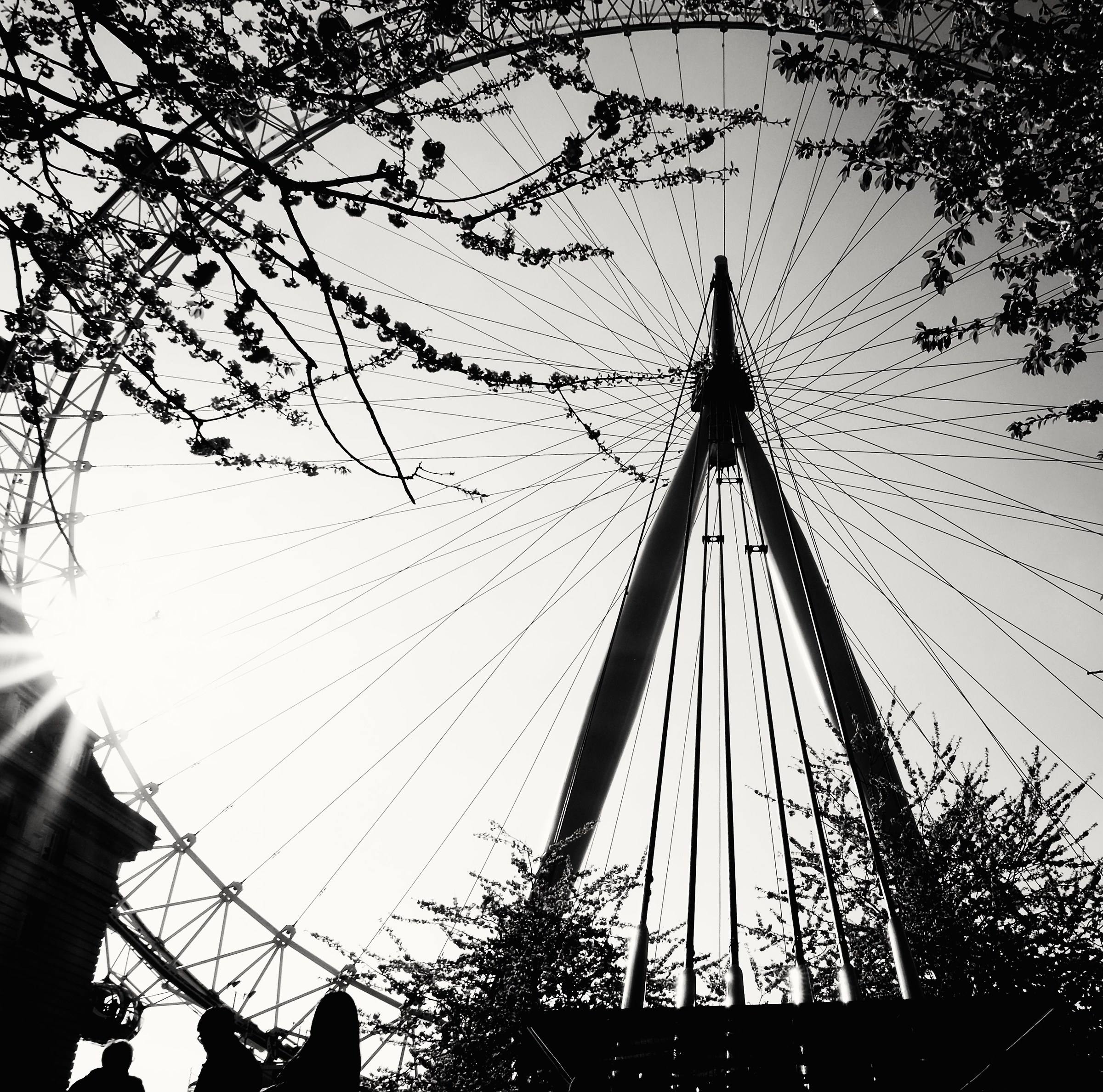 Spring at the London Eye...
