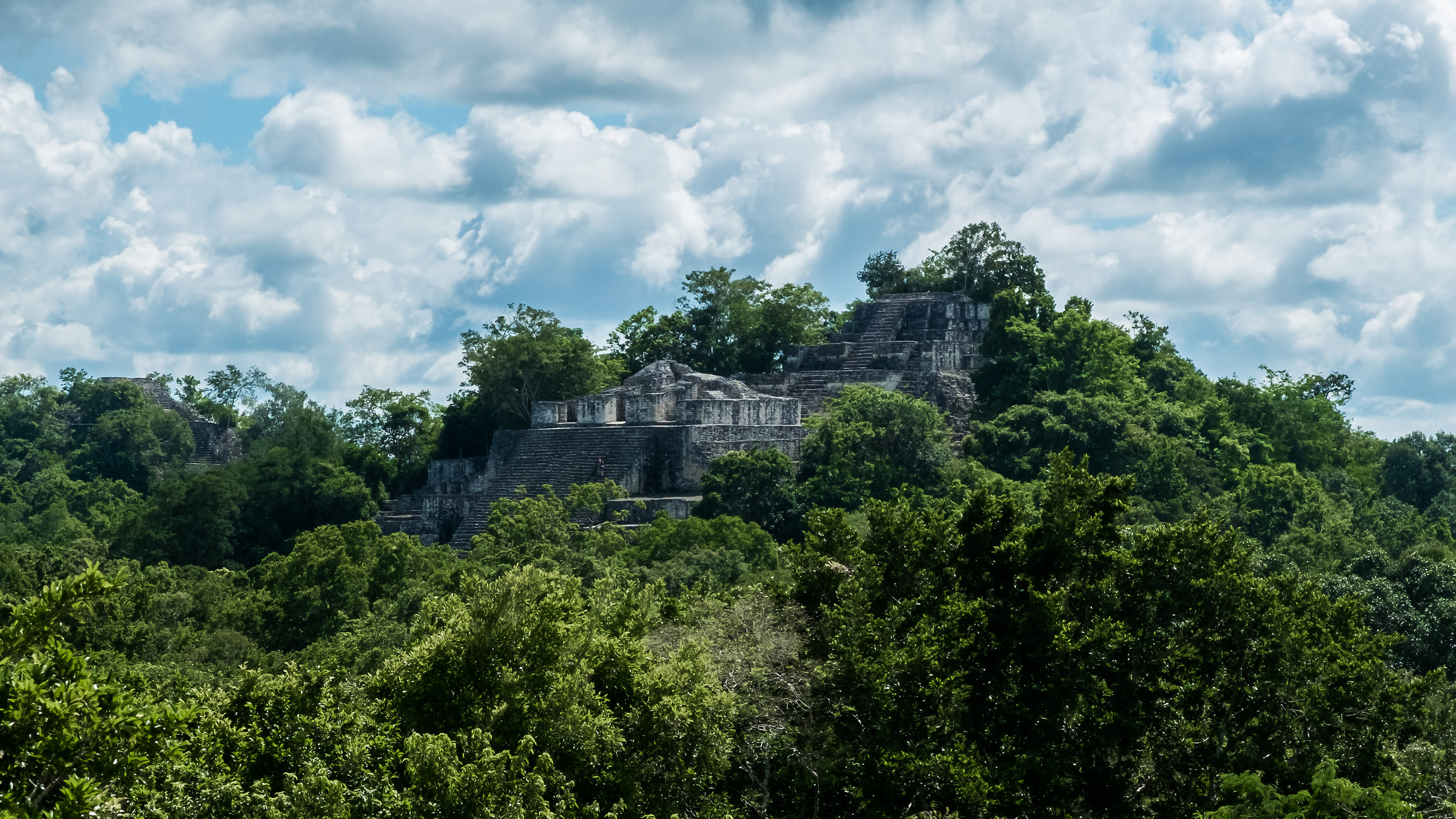 Calakmul - Temple flooded by the jungle...