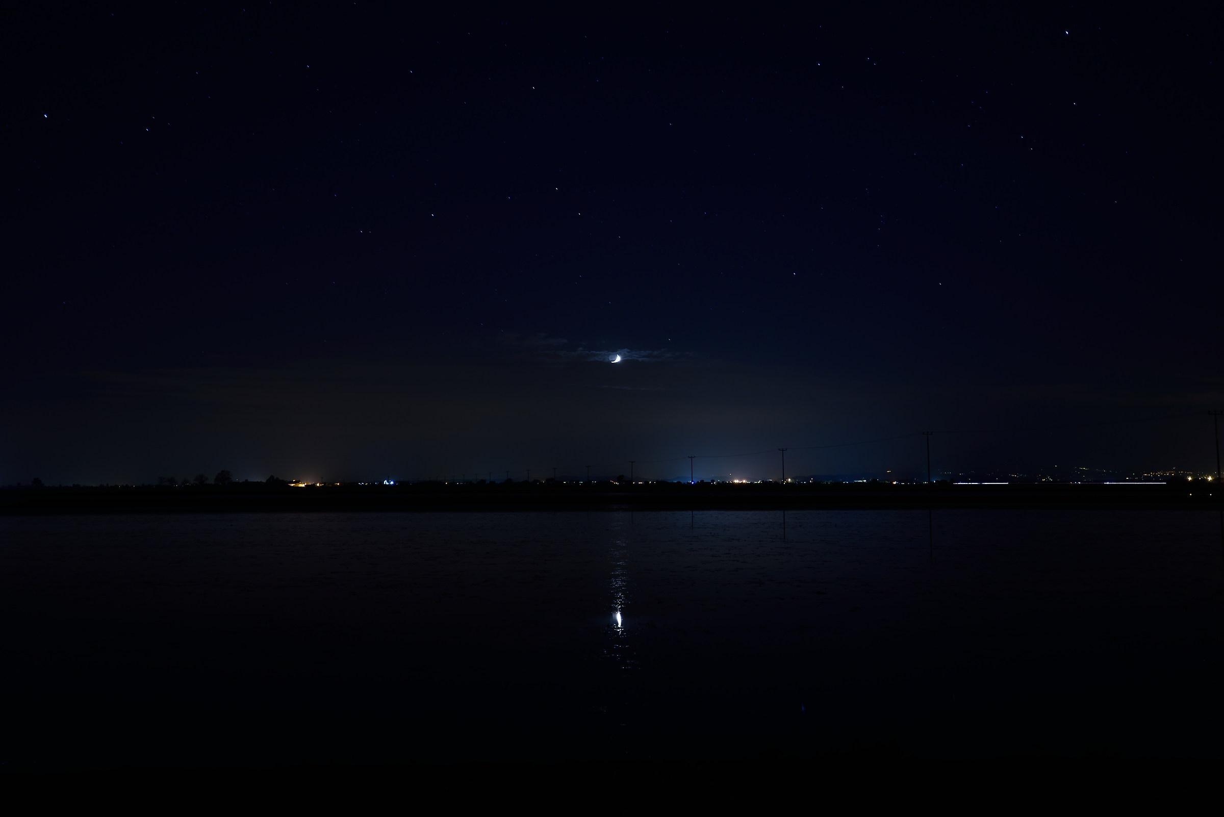 Moon in paddy field...
