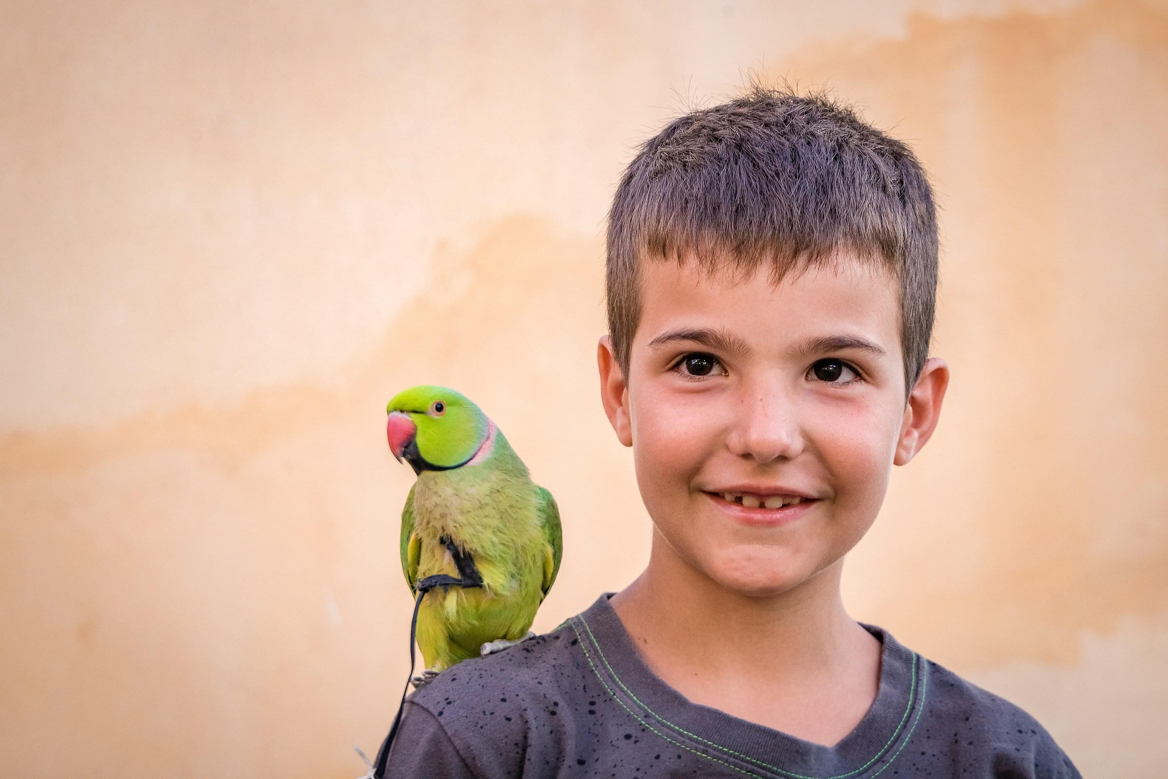 Amico pappagallo...
