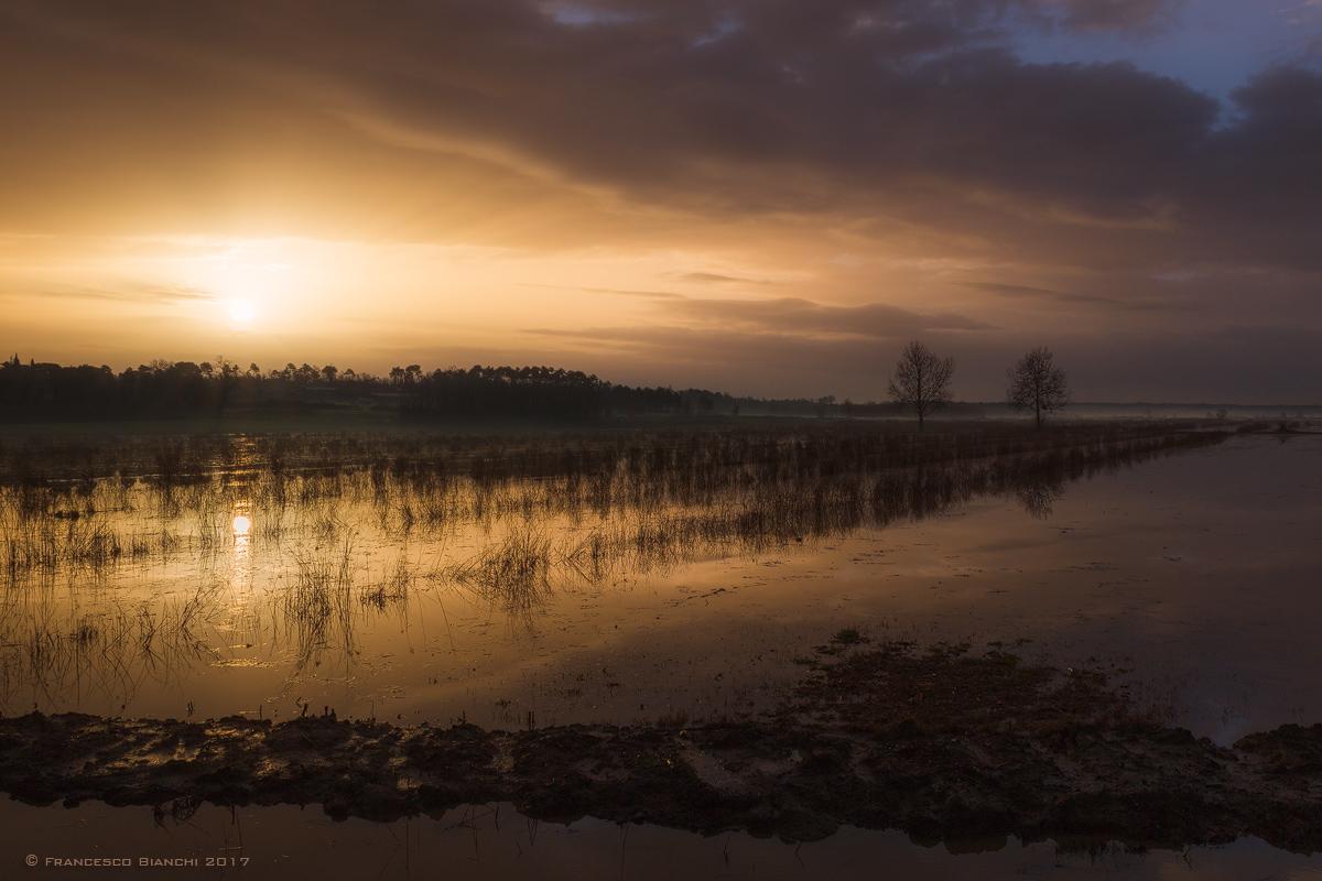 Dawn on the padule...